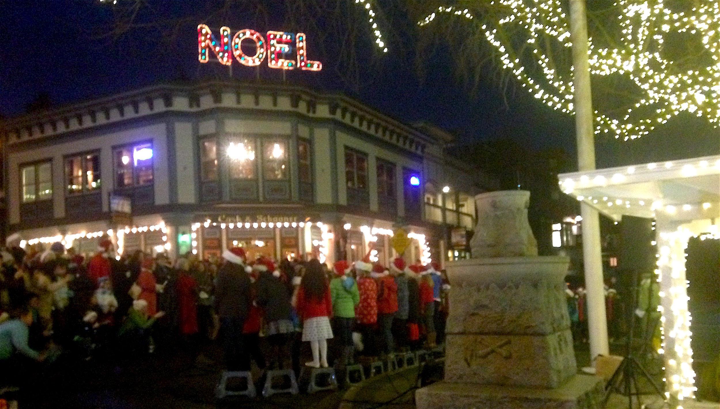 Tree Lighting Ceremony at Memorial Park in Friday Harbor