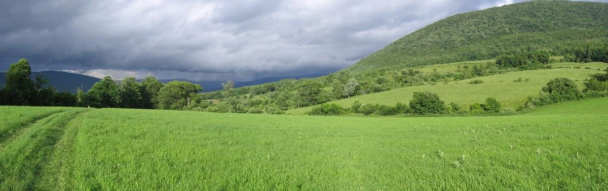 Tad  Ames - farm stormy sky.jpg