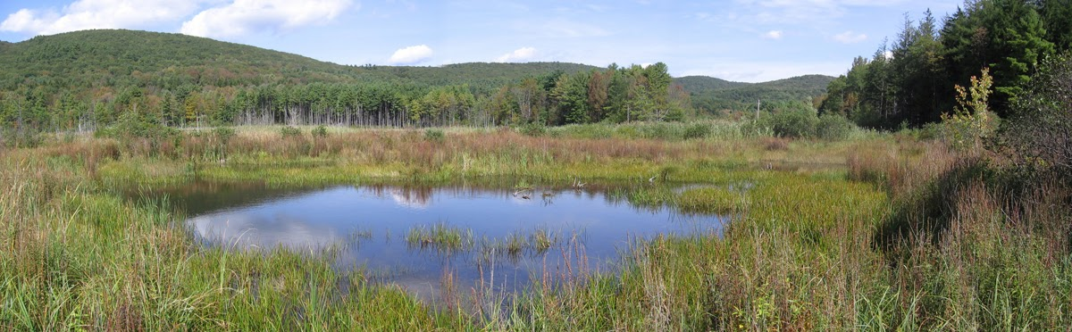 Tad  Ames - pano pond and ridge.jpg