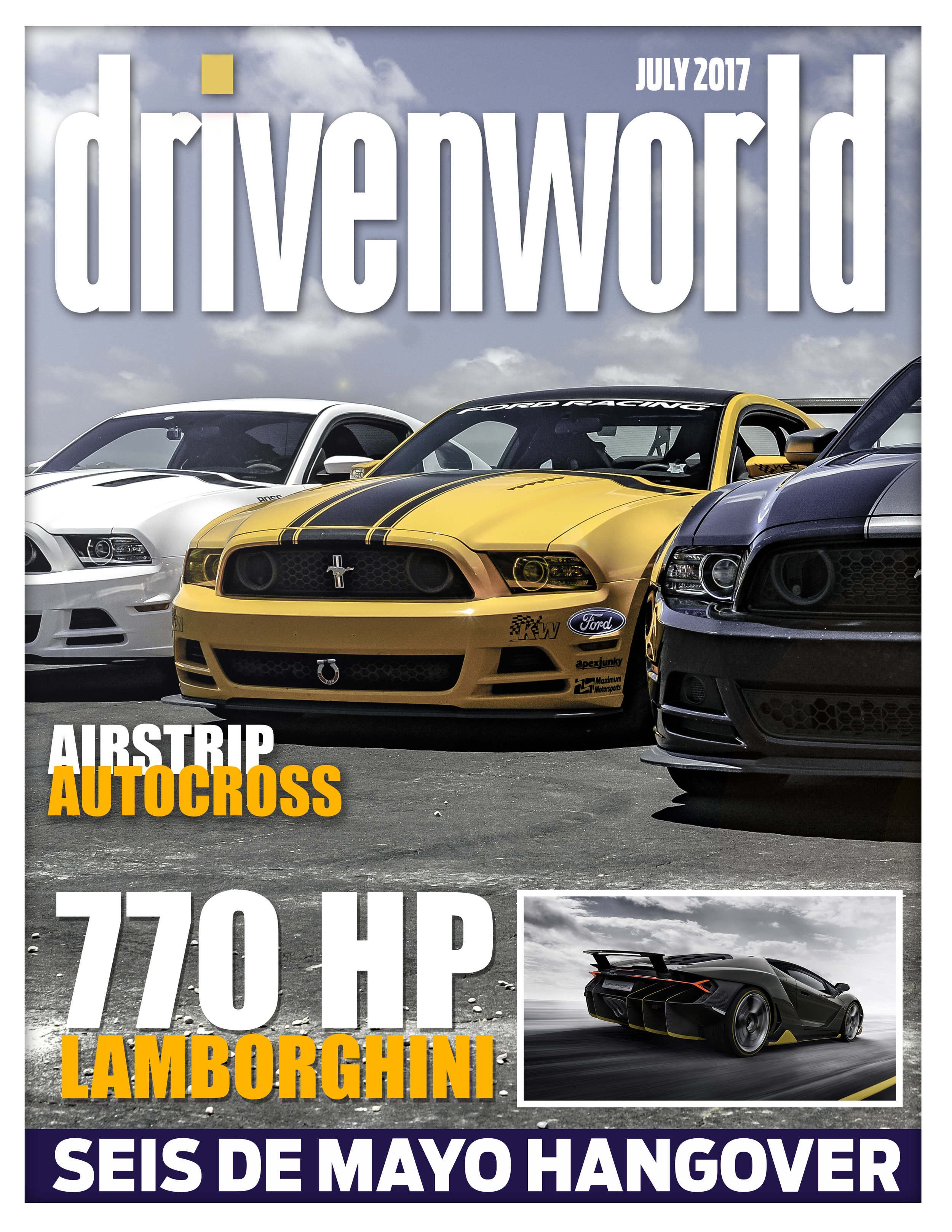 DW cover 004.jpg