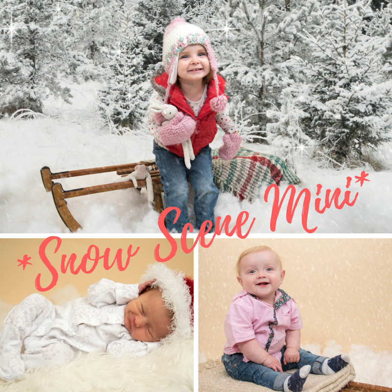 Snow Scene Mini - *3 spaces left*3rd December: 11am, 11.30am & 12 noon