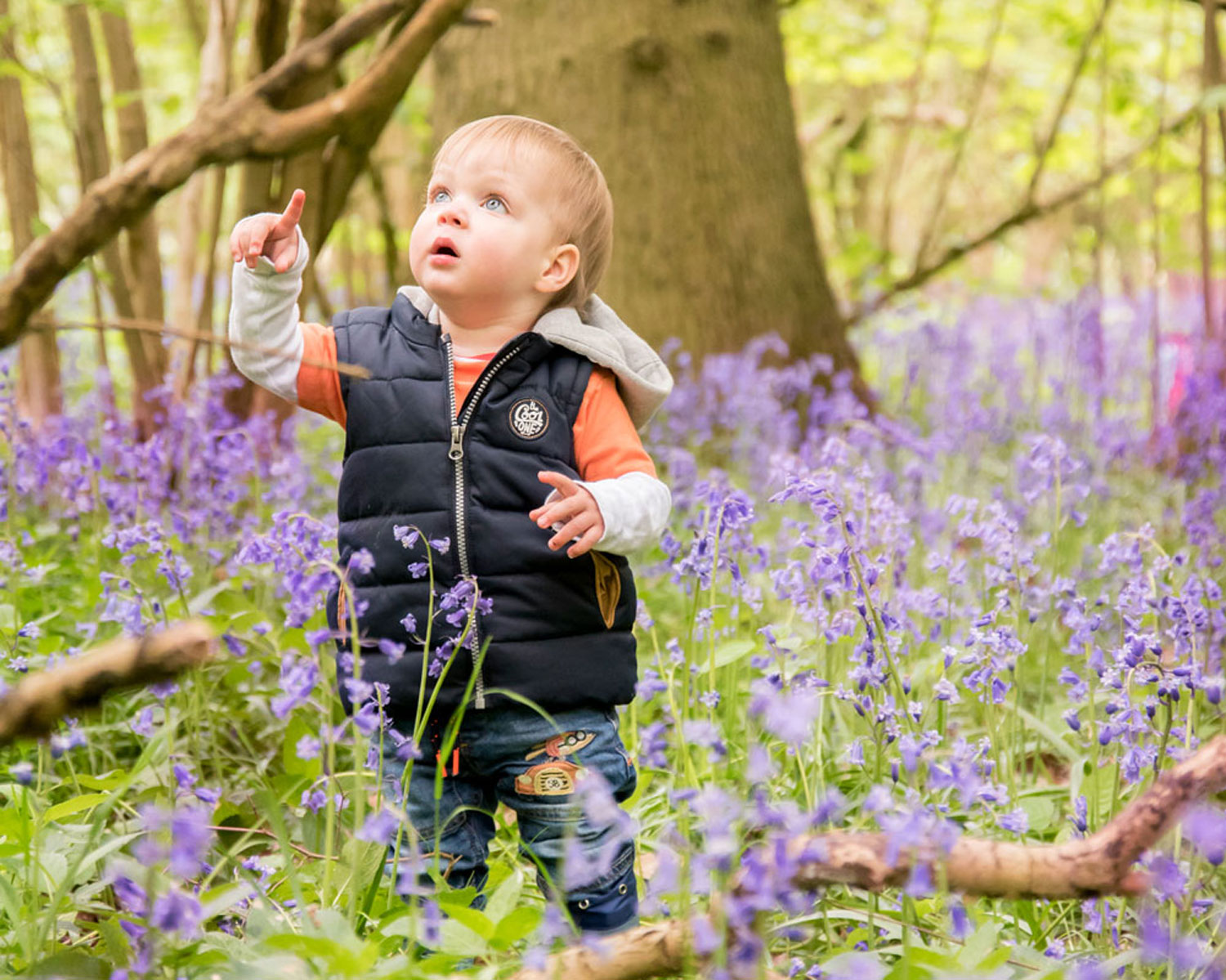 Bluebell Mini Session - My Son has been having photography sessions with Vicki since he was 3 months old, now 17 months. Vicki is amazing with young children photography and can really capture their attention and get great photos. Very child friendly. With some effective props and backdrops and is very adaptable to individual needs.Jen, 5* Facebook Review