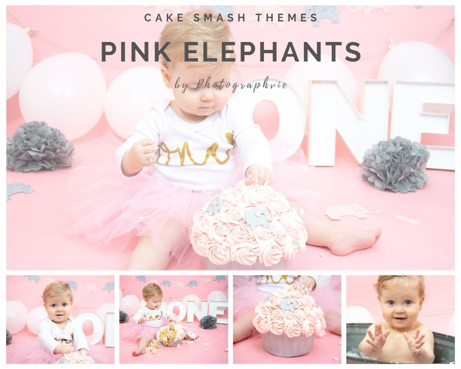 Pink Elephant Cake Smash Photoshoot