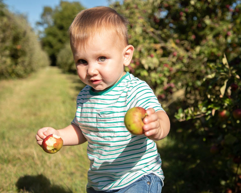 location outdoor seasonal photoshoot baby photography ely studio newborn apple picking family cambridge photographer near me (20).jpg