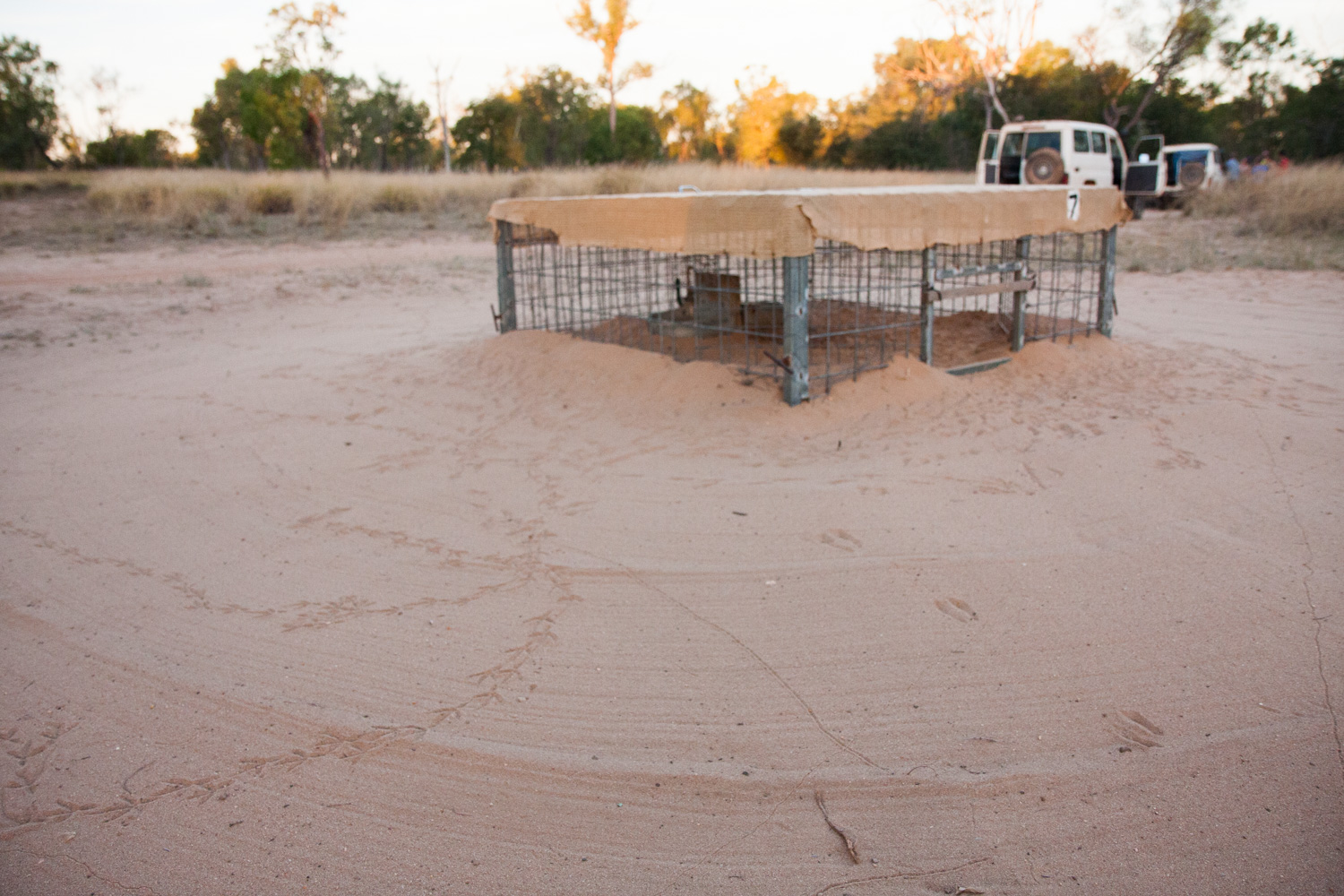 Water and feed stations are set up for the wombats. Clearly other animals enjoy them too.