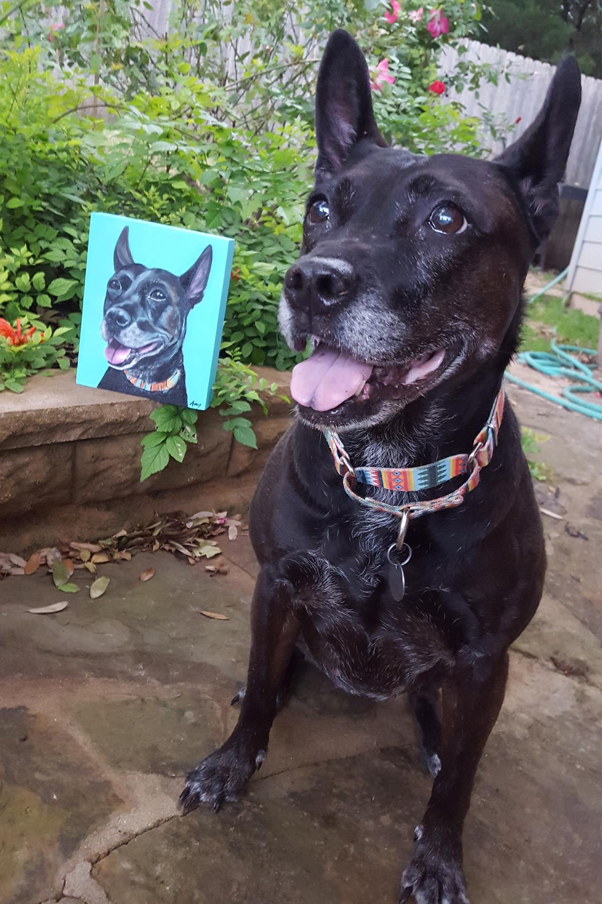 Shelby custom dog portrait painting