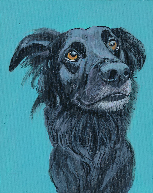 dog-paint-LOUIE.jpg