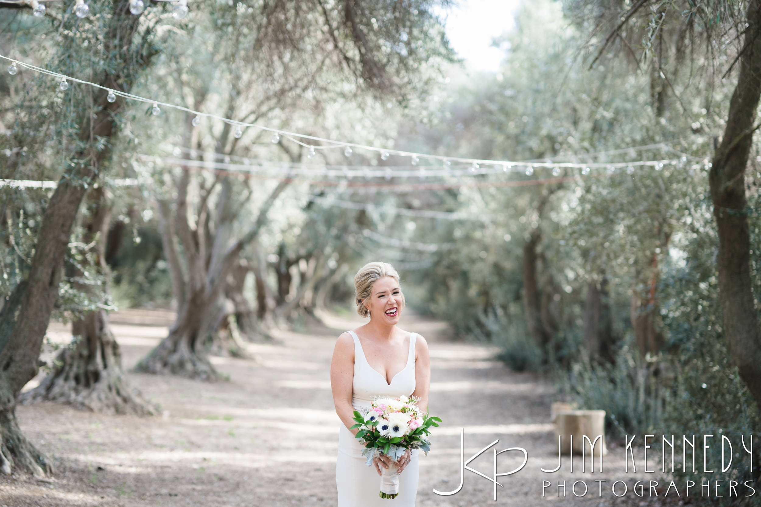 jim_kennedy_photographers_highland_springs_wedding_caitlyn_0058.jpg