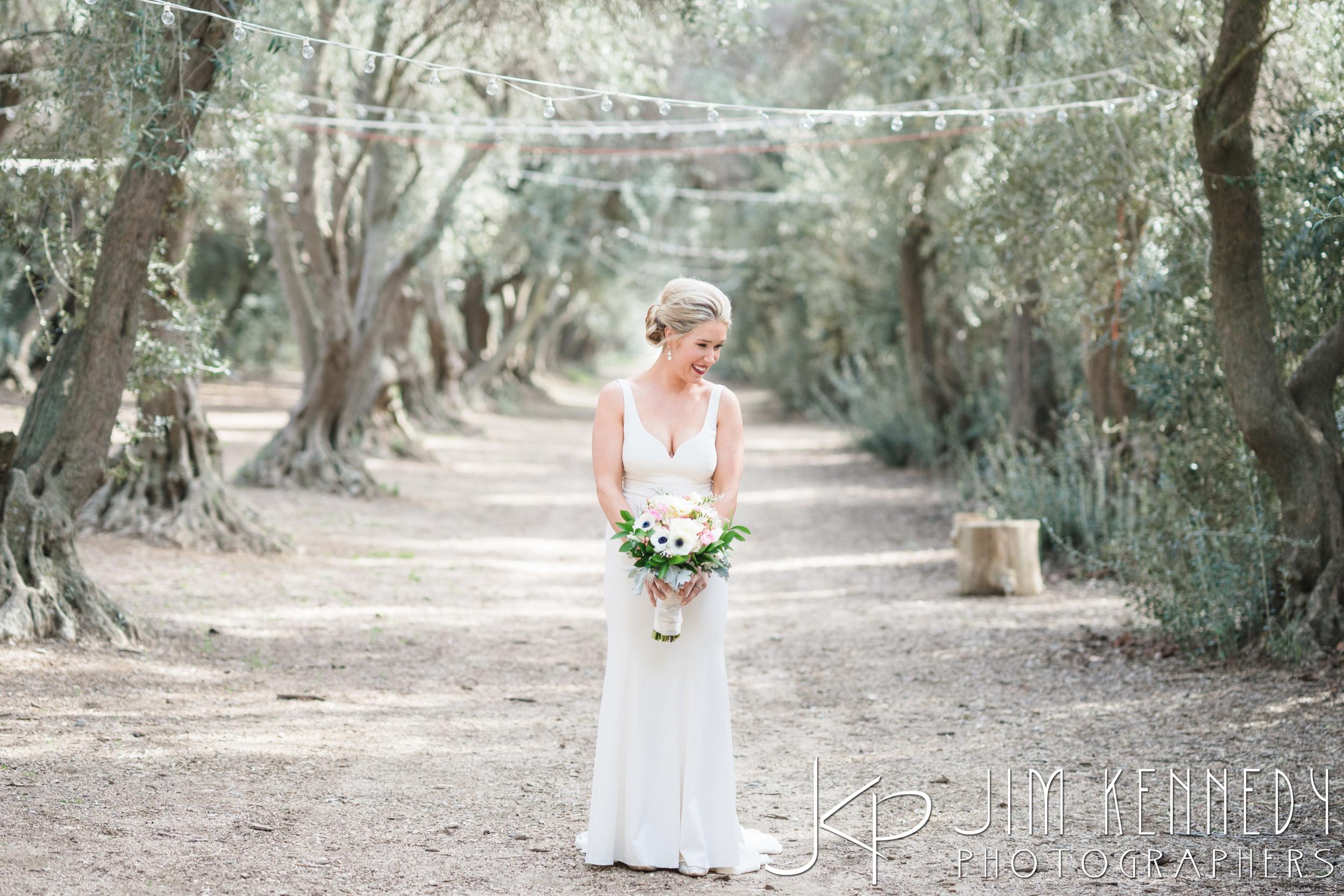 jim_kennedy_photographers_highland_springs_wedding_caitlyn_0057.jpg