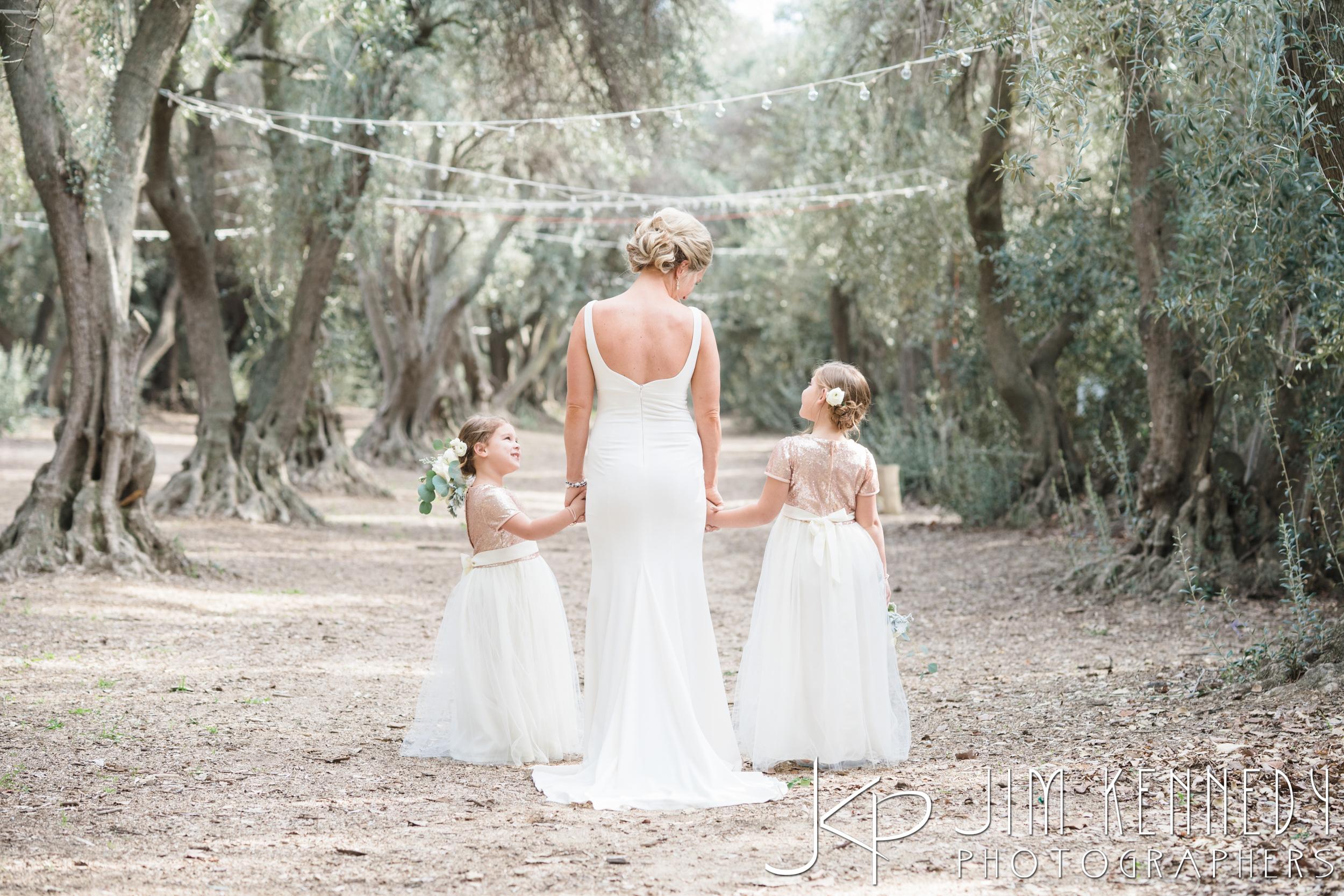 jim_kennedy_photographers_highland_springs_wedding_caitlyn_0067.jpg