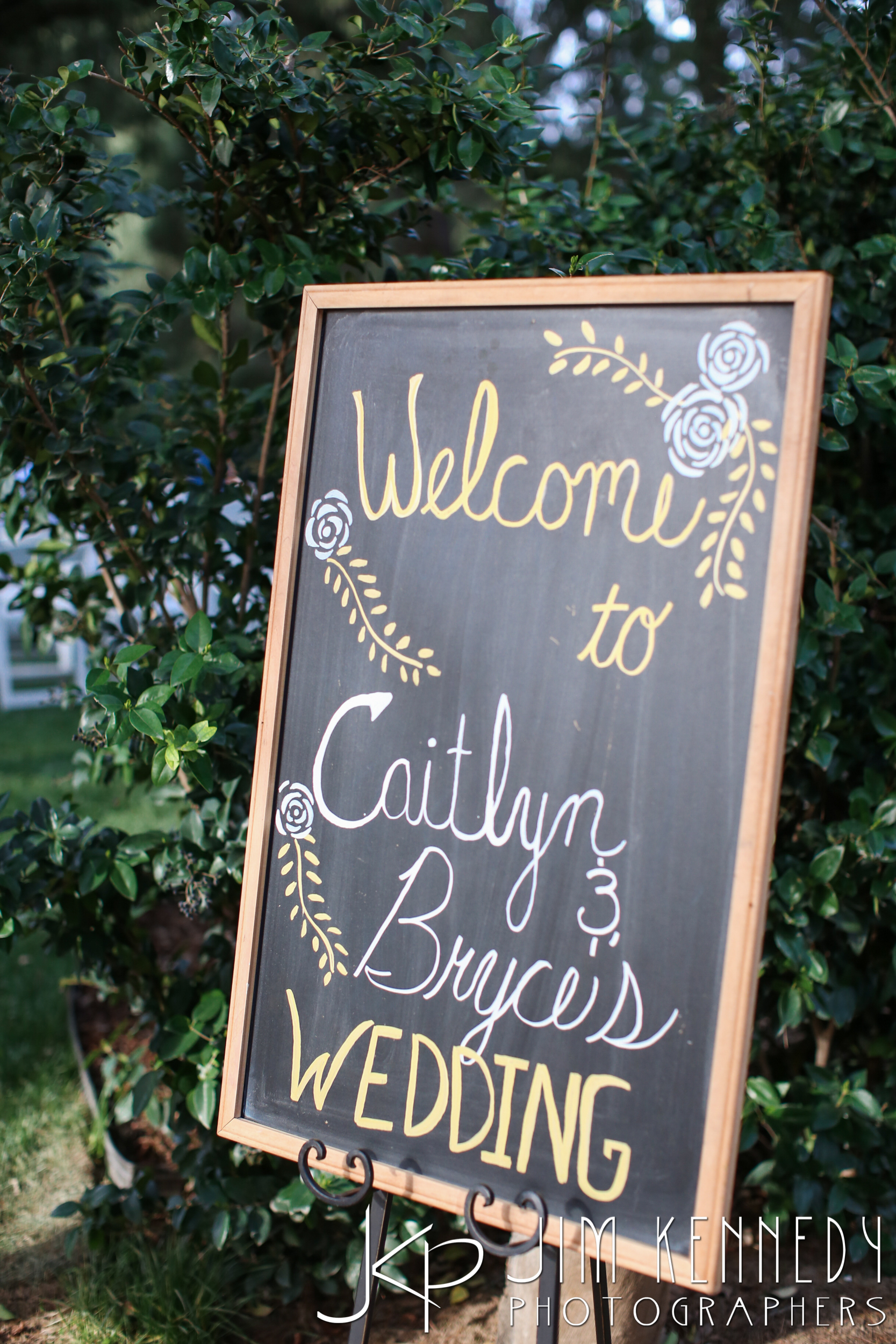 jim_kennedy_photographers_highland_springs_wedding_caitlyn_0096.jpg