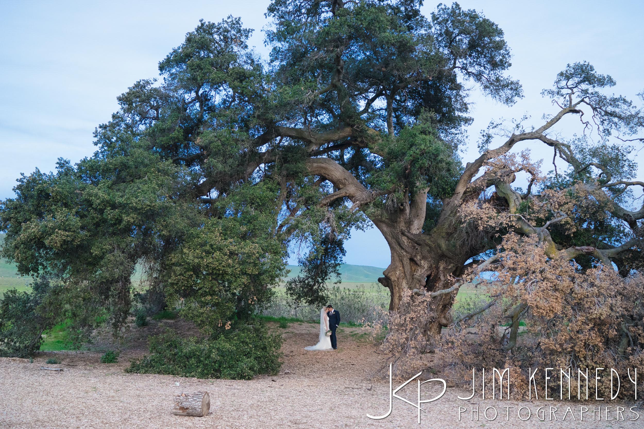 jim_kennedy_photographers_highland_springs_wedding_caitlyn_0148.jpg
