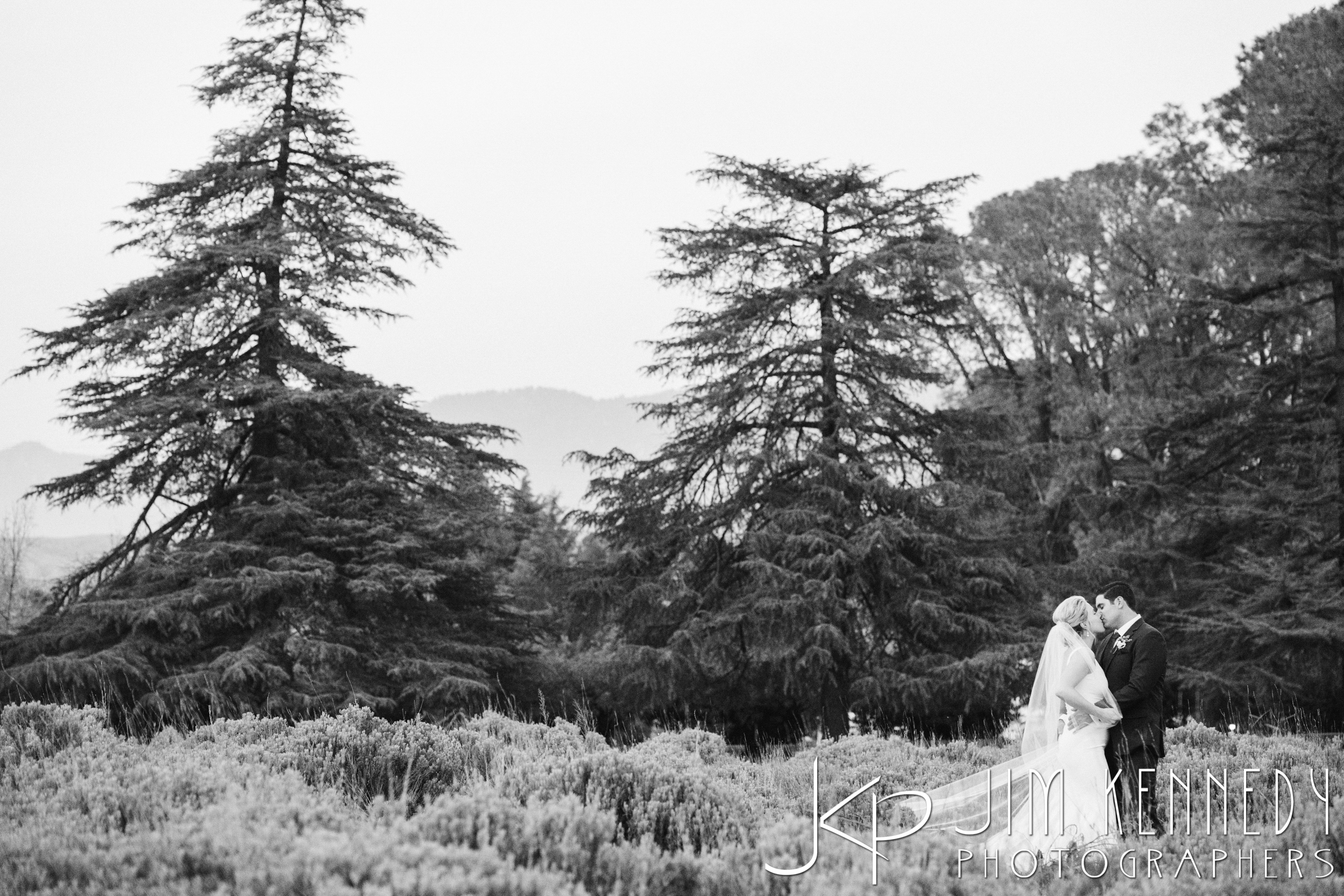 jim_kennedy_photographers_highland_springs_wedding_caitlyn_0160.jpg