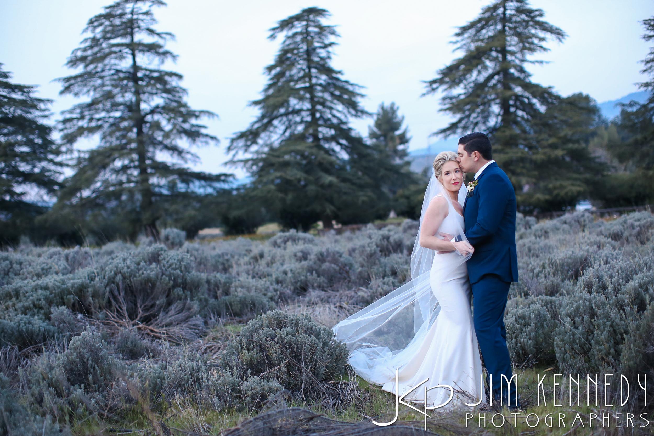 jim_kennedy_photographers_highland_springs_wedding_caitlyn_0163.jpg