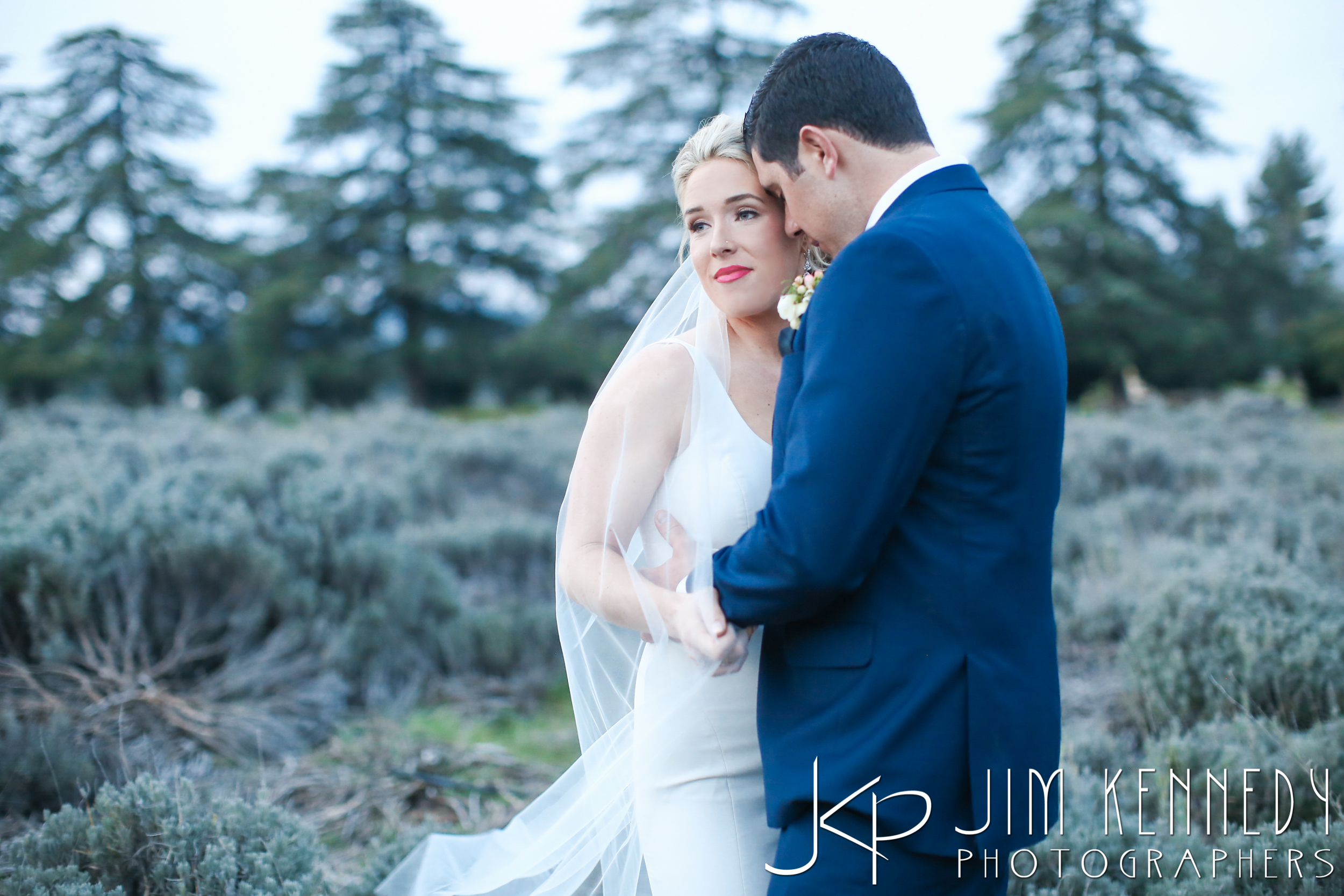 jim_kennedy_photographers_highland_springs_wedding_caitlyn_0164.jpg