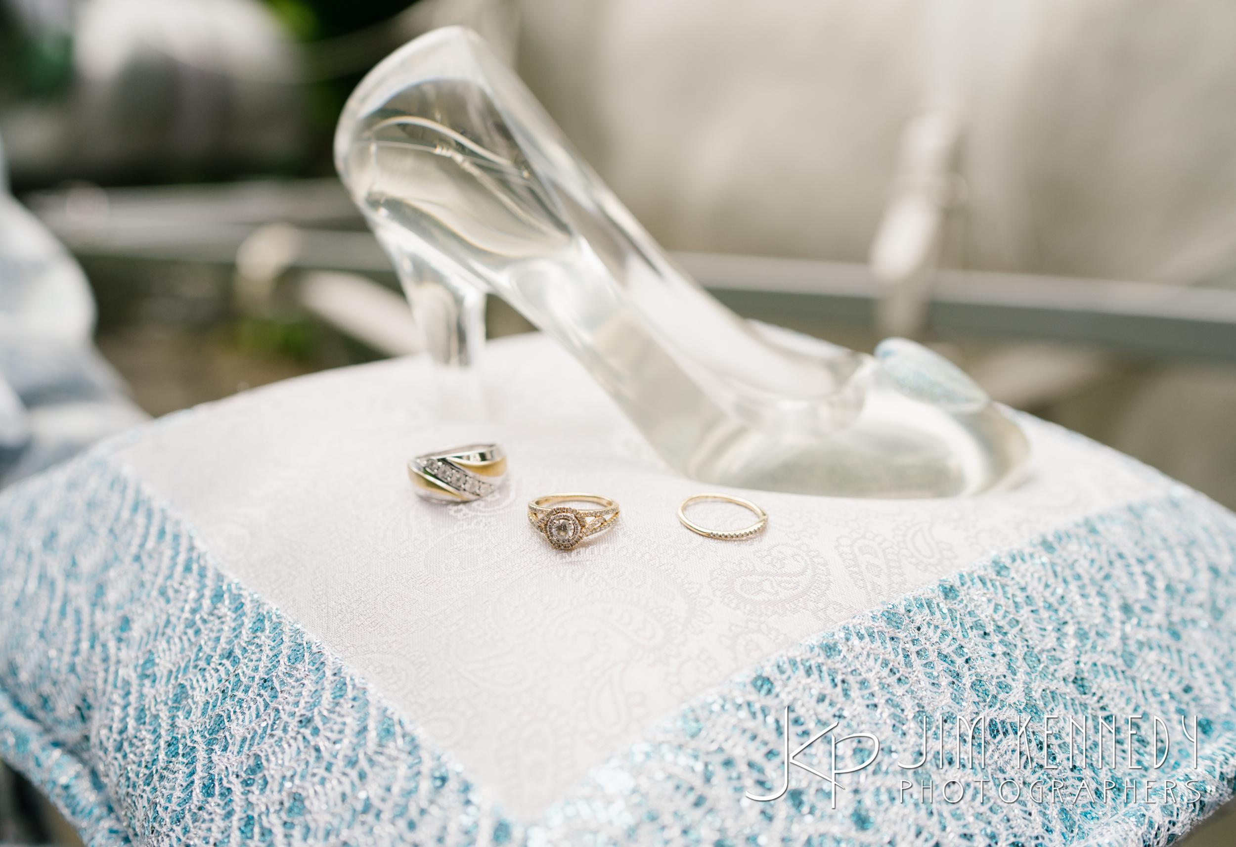 disneyland-wedding-086.JPG
