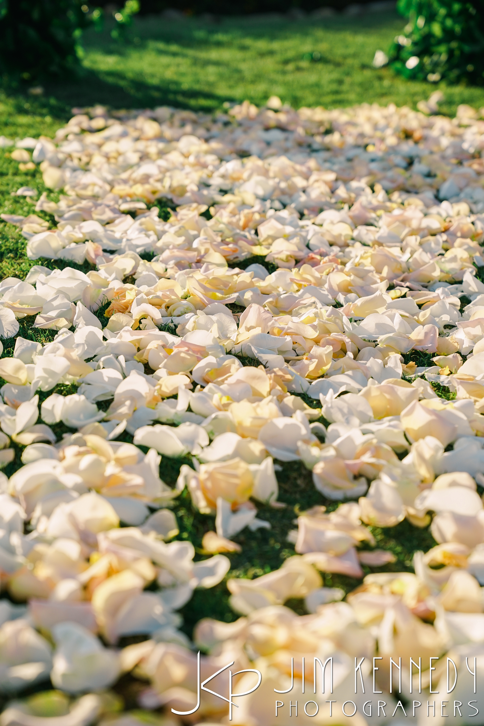 Montage-Laguna-Beach-Wedding-0034.JPG