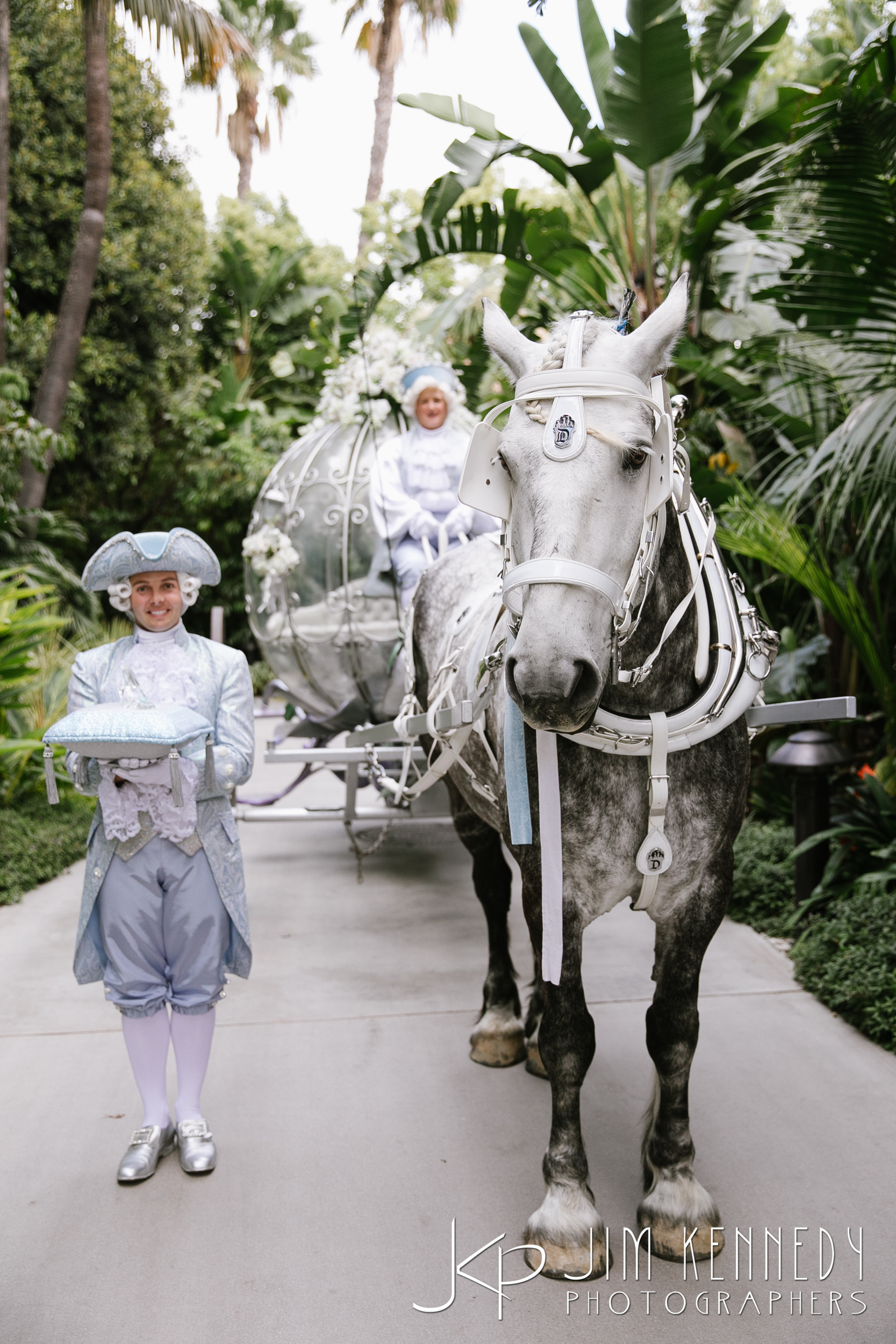 disneyland_resort_wedding-2487.jpg