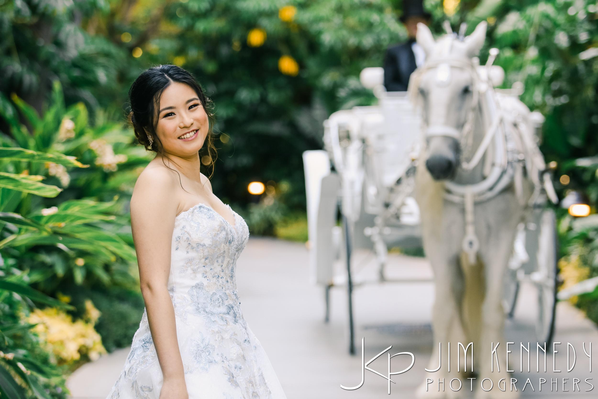 Disney-Rose-Court-Garden-Wedding_0068.JPG