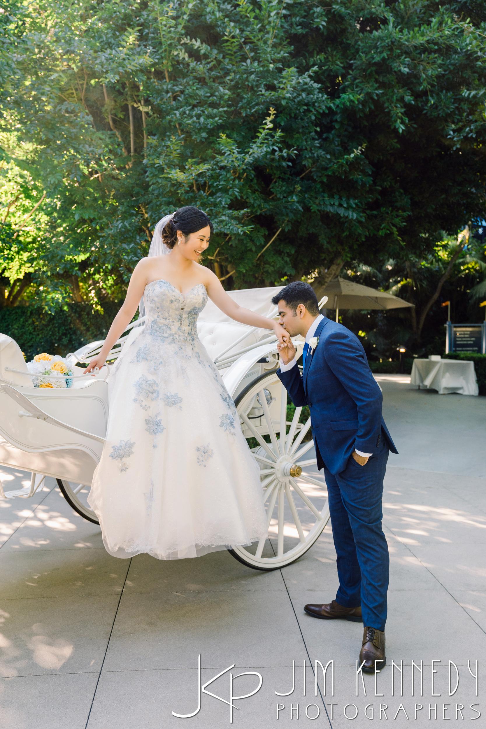 Disney-Rose-Court-Garden-Wedding_0096.JPG