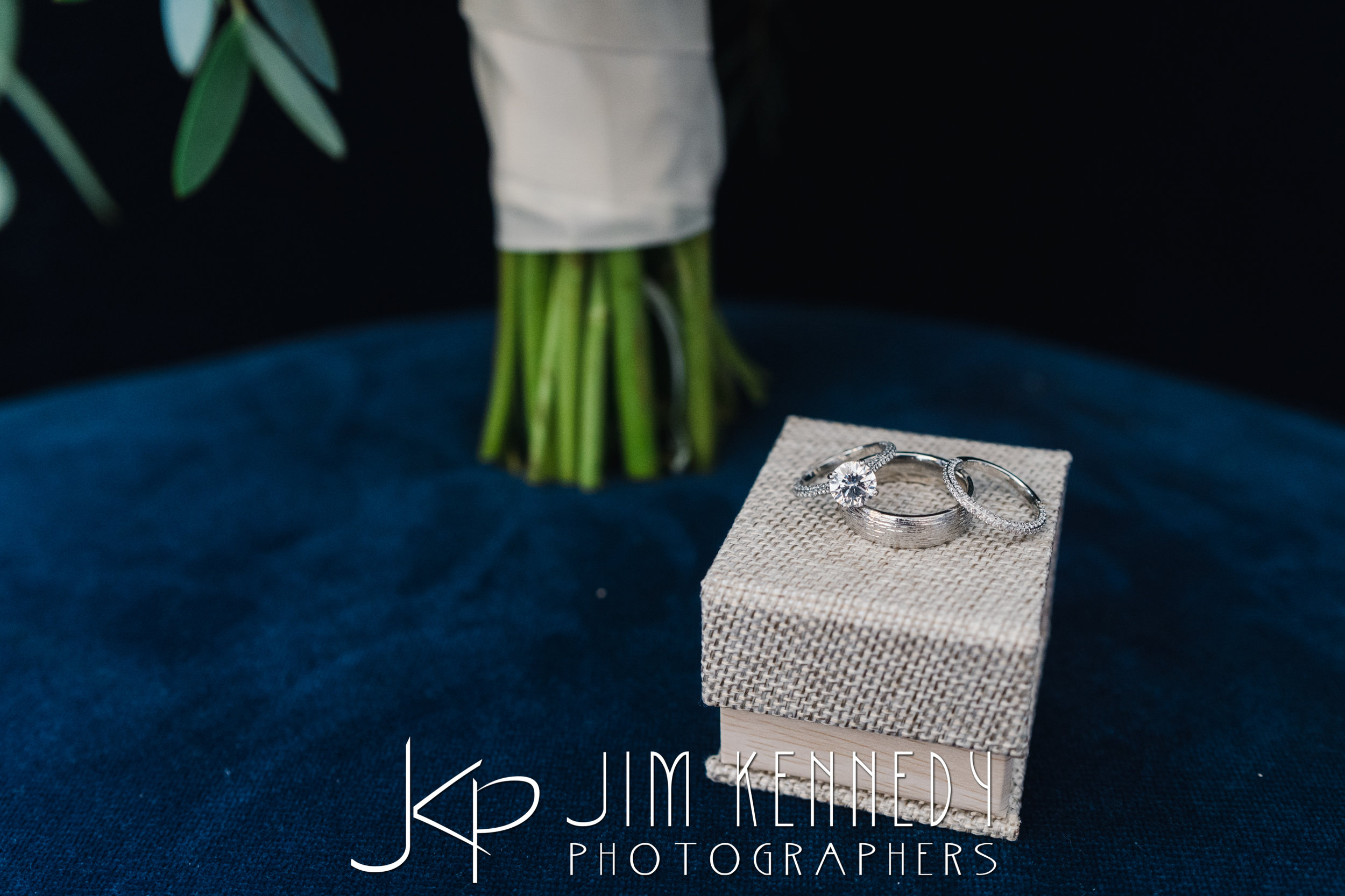 tom-hams-lighthouse-wedding_0015.JPG