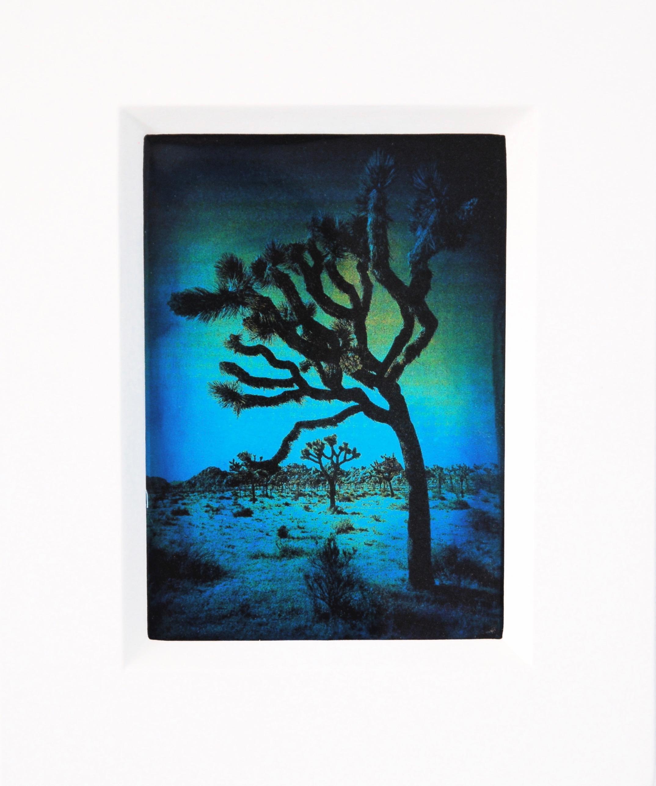 "Julia King - Blue Joshua Tree, 10 1/2""h x 8 3/4""w x 1 3/4""d, photography based 3-d mixed media, resin, pigment, handmade wood frame"