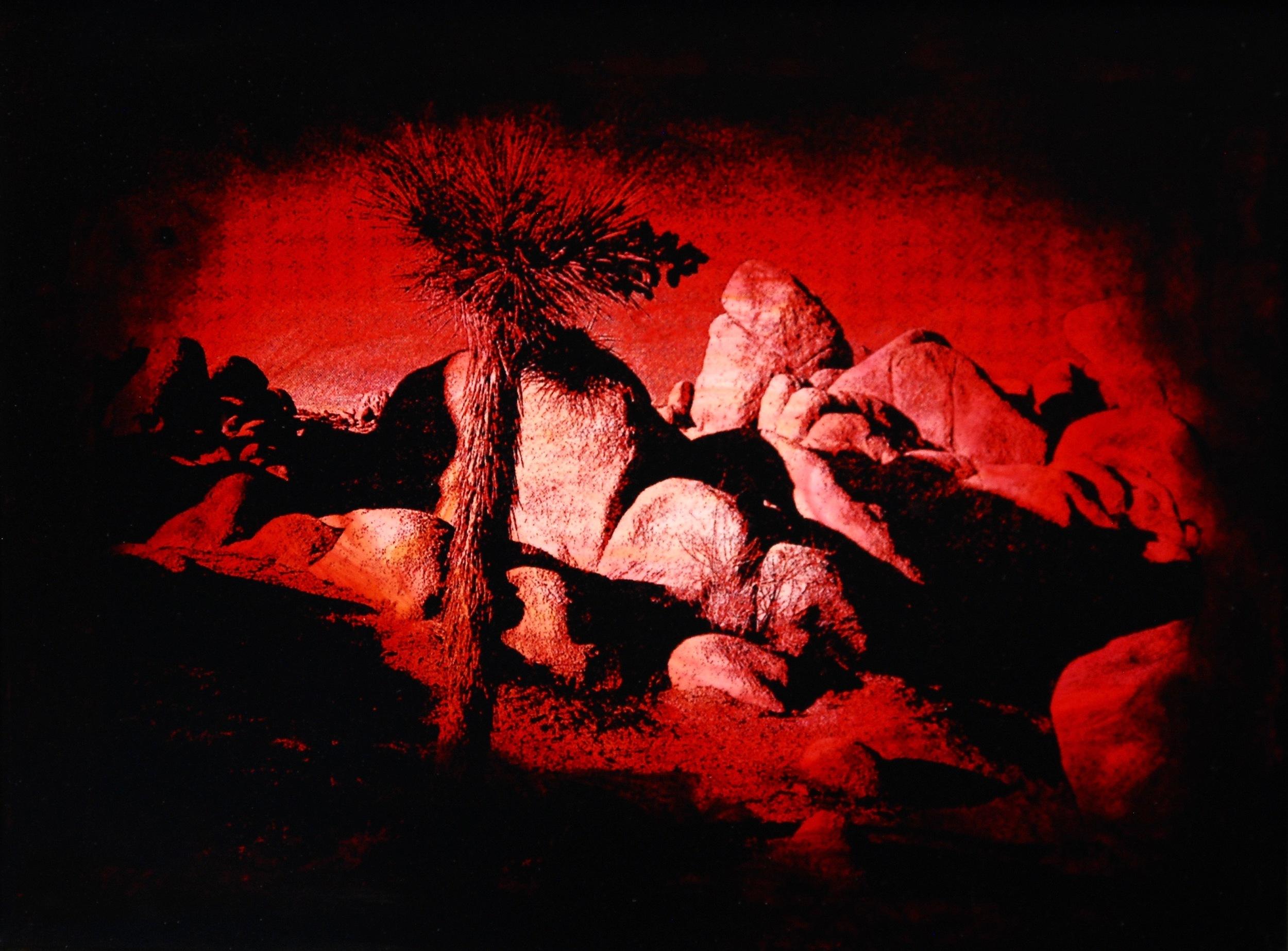 "Julia King - Red Desert (detail), 11""h x 13""w x 1 3/4""d, photography based 3-d mixed media, resin, pigment, handmade wood frame"