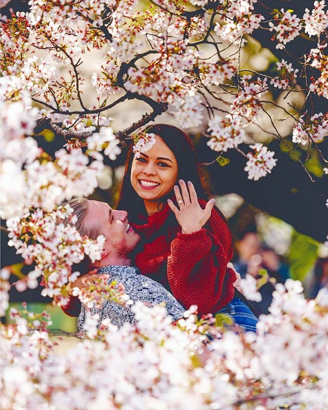 """Under the cherry blossom's shade there is no such thing as an untouched heart."" -Japanese Proverb. Congratulations Chris & Deane on your engagement 🌸💕"