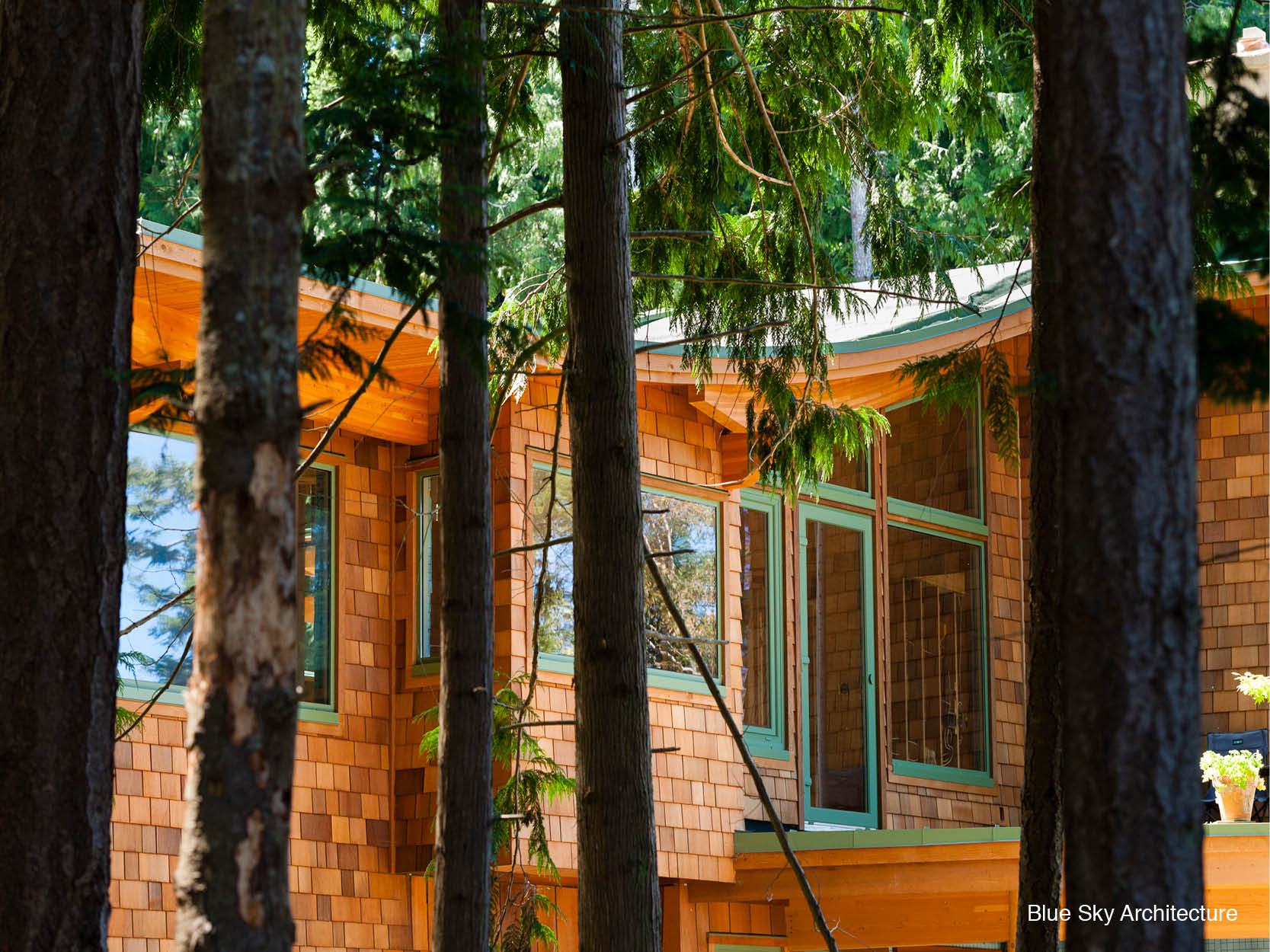 Natural materials in the forest architecture of Brigantine House