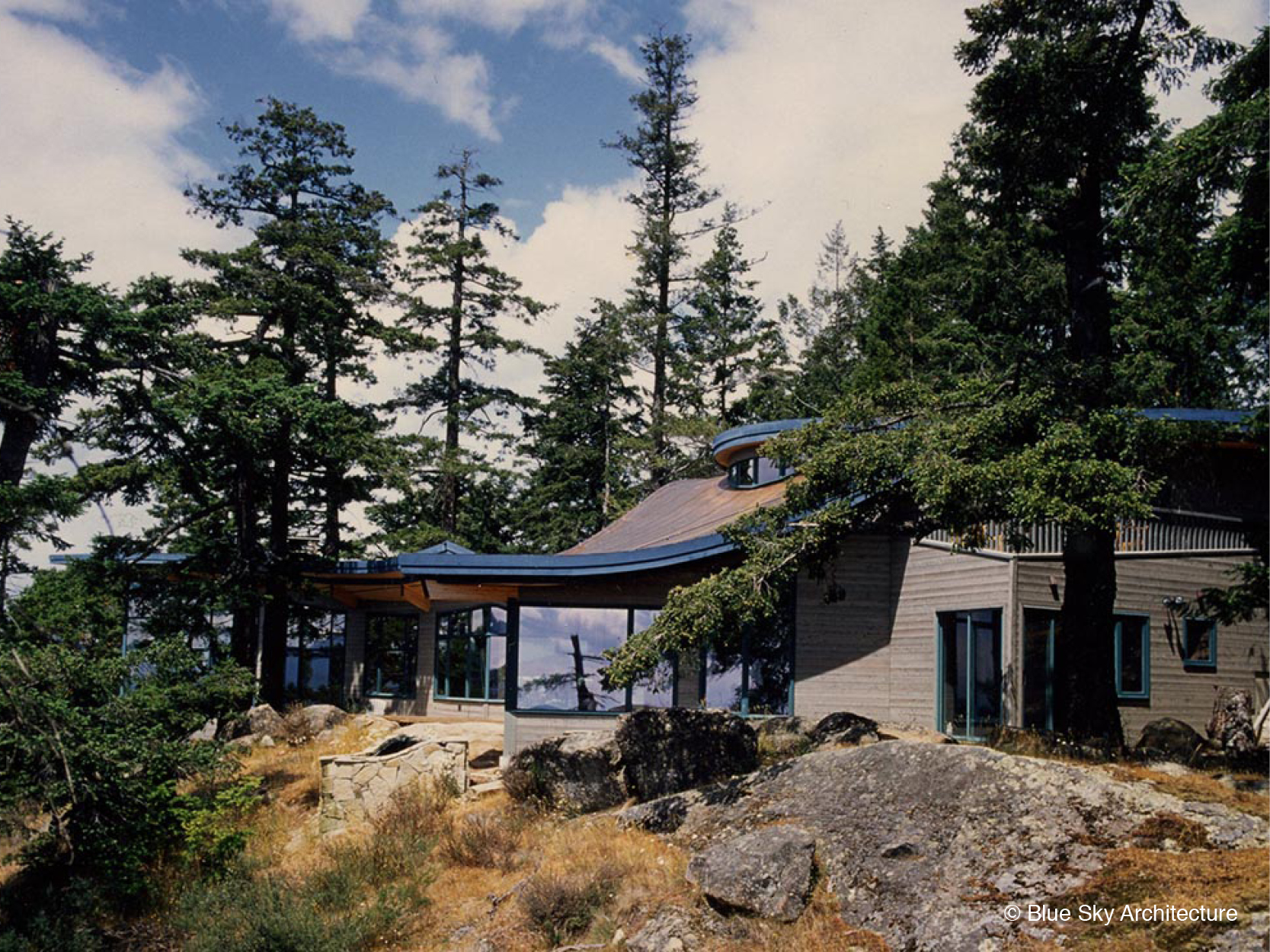 Island Architecture with Dynamic Roofline