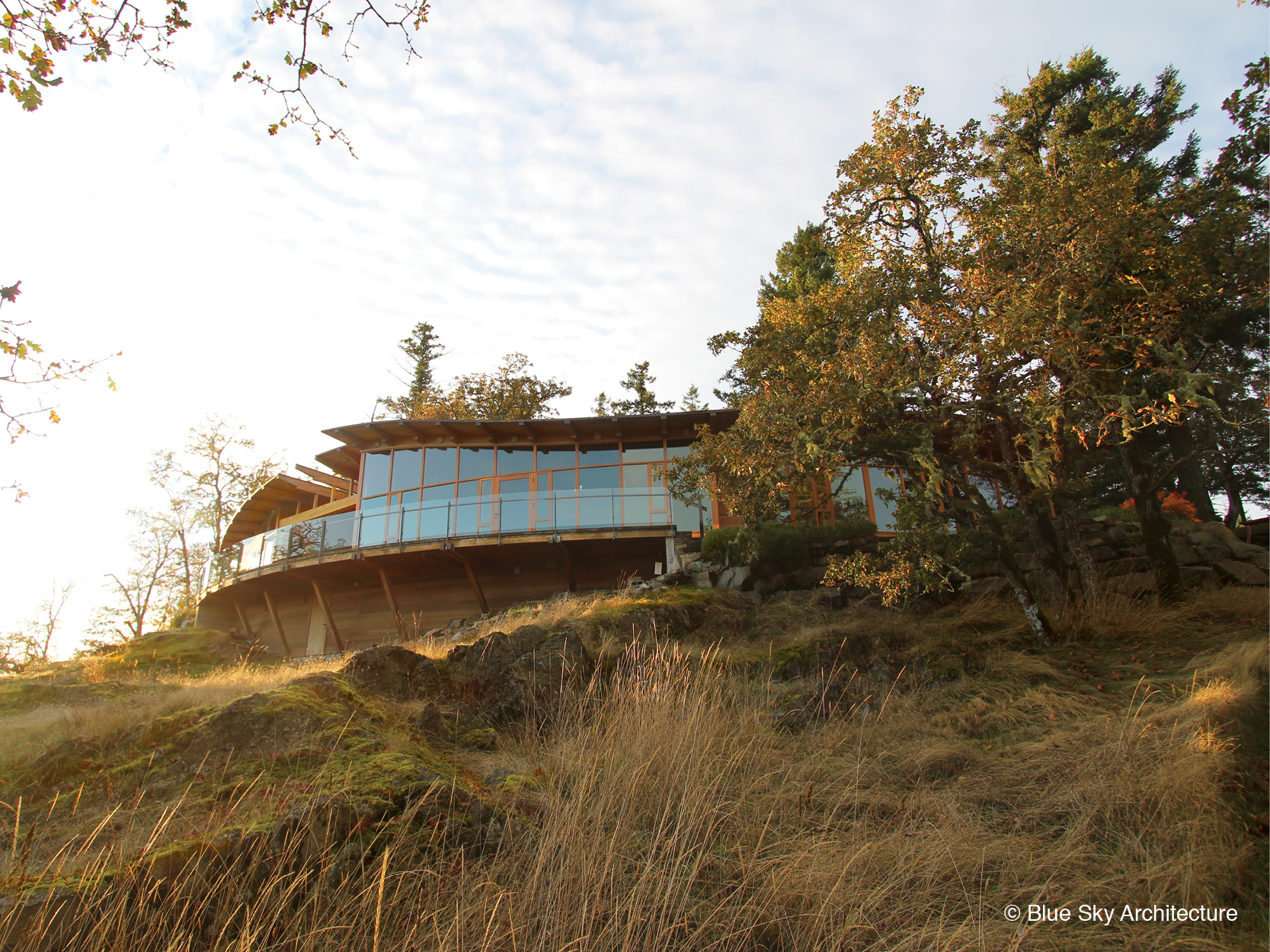 West Coast Modern house built on hillside with heavy timber