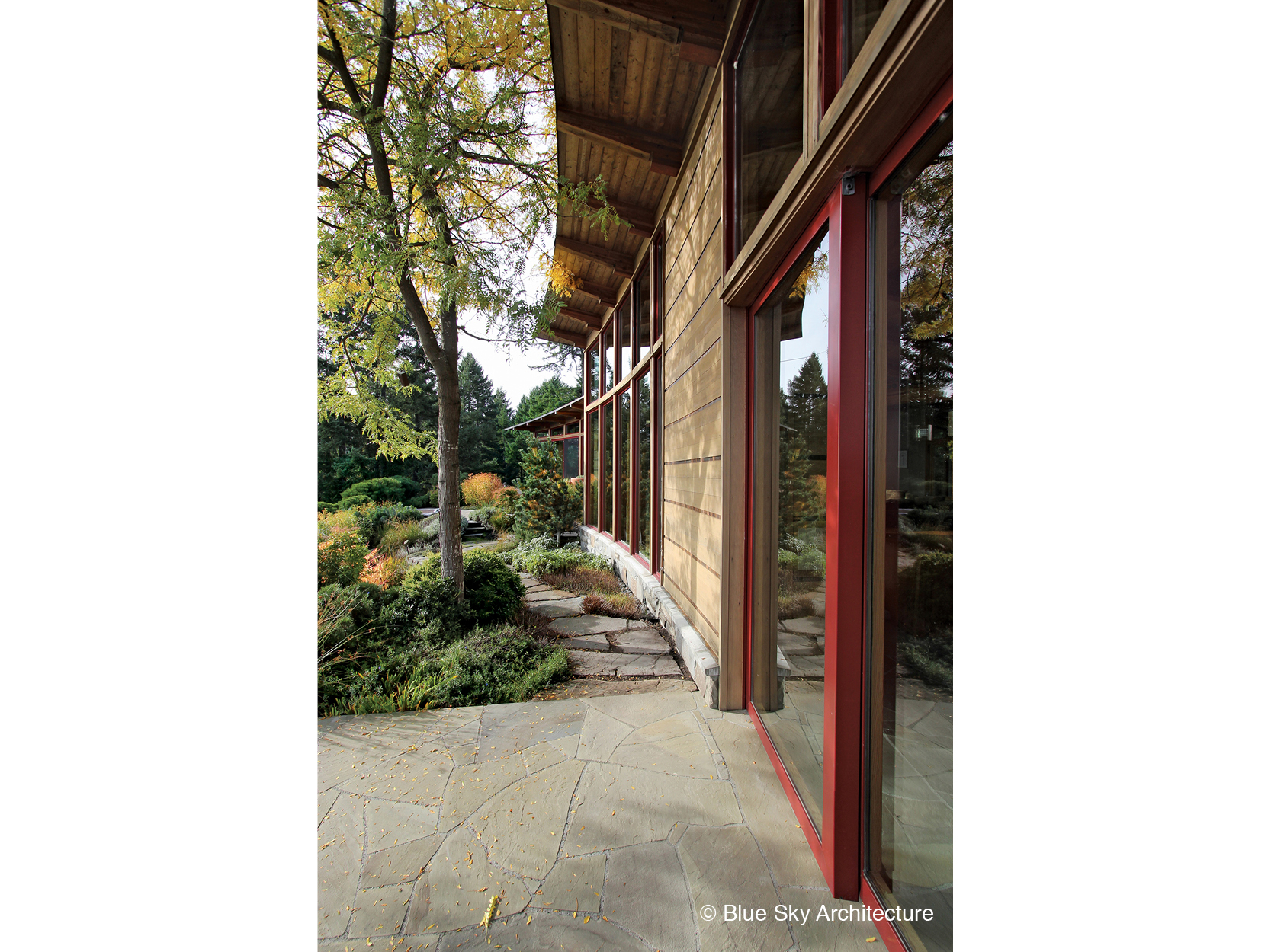 Wood exterior panelling on West Coast modern home