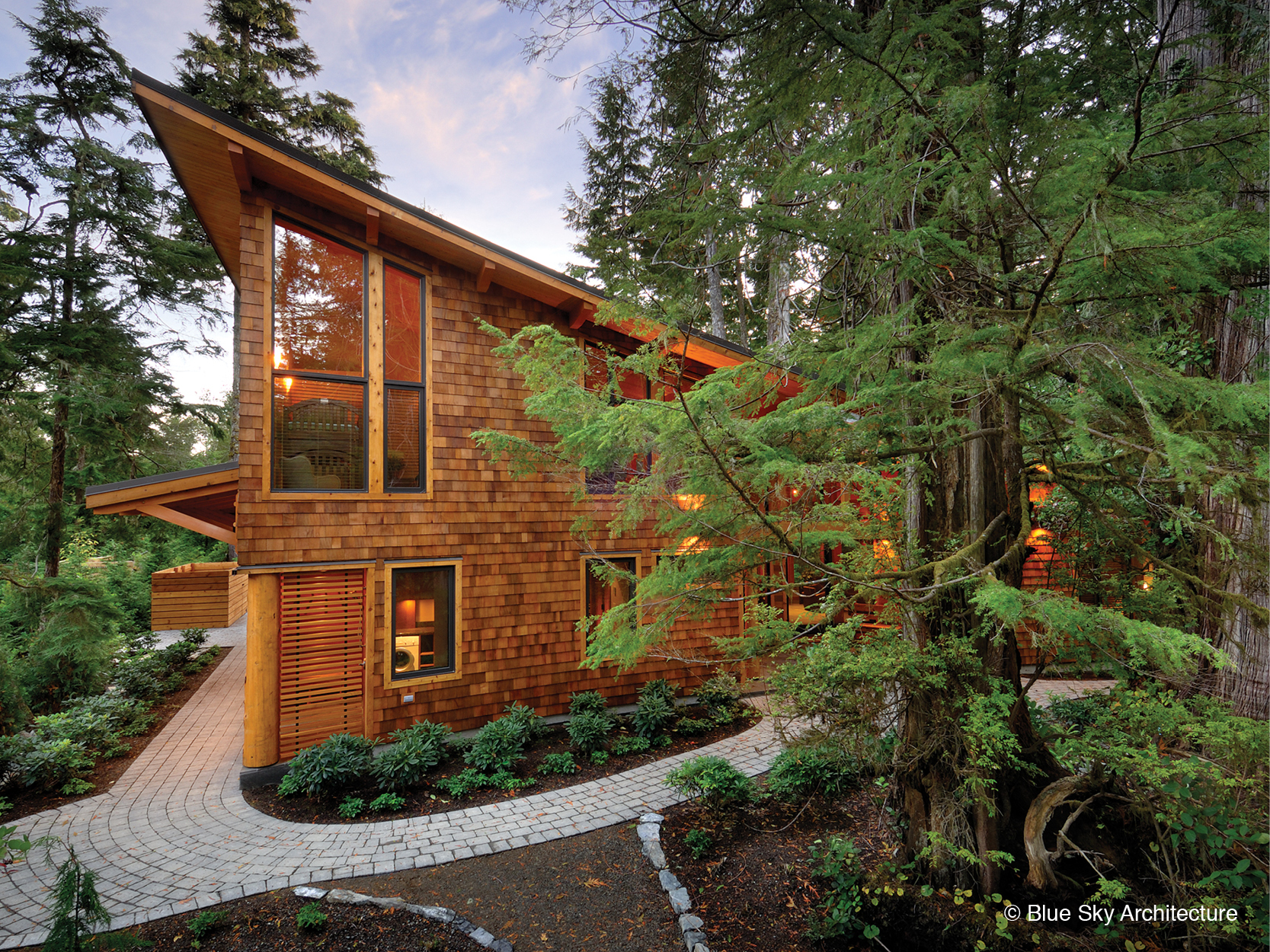Forest setting residential design of Rainforest House