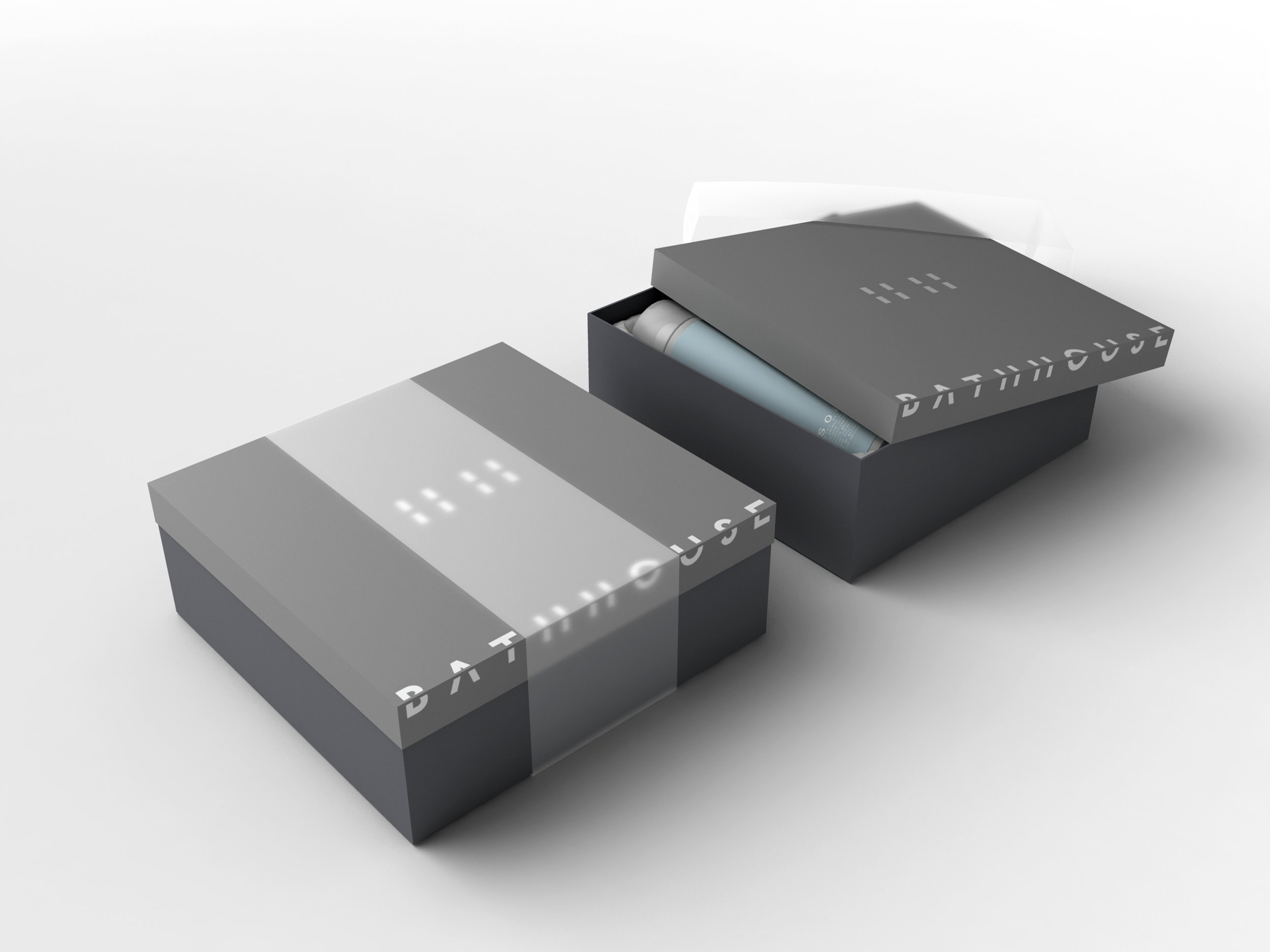 box2-11x17.jpg