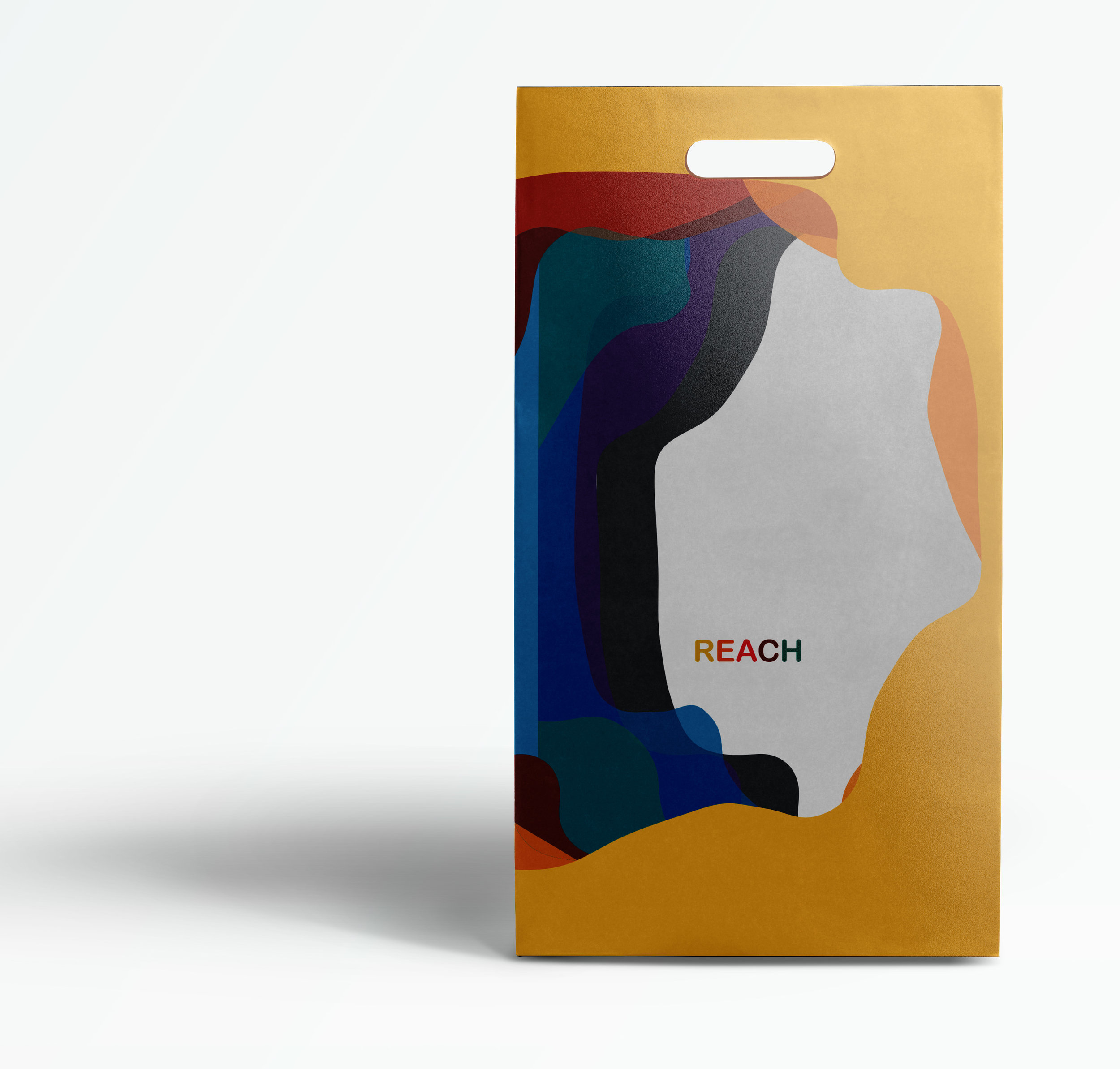 Reach Bag.jpg