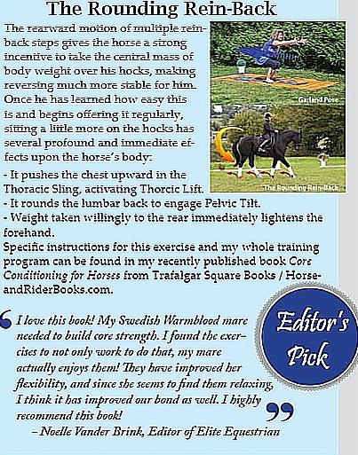 Elite Equestrian Magazine Editor's Review of Book Fall 2019 cut.jpg