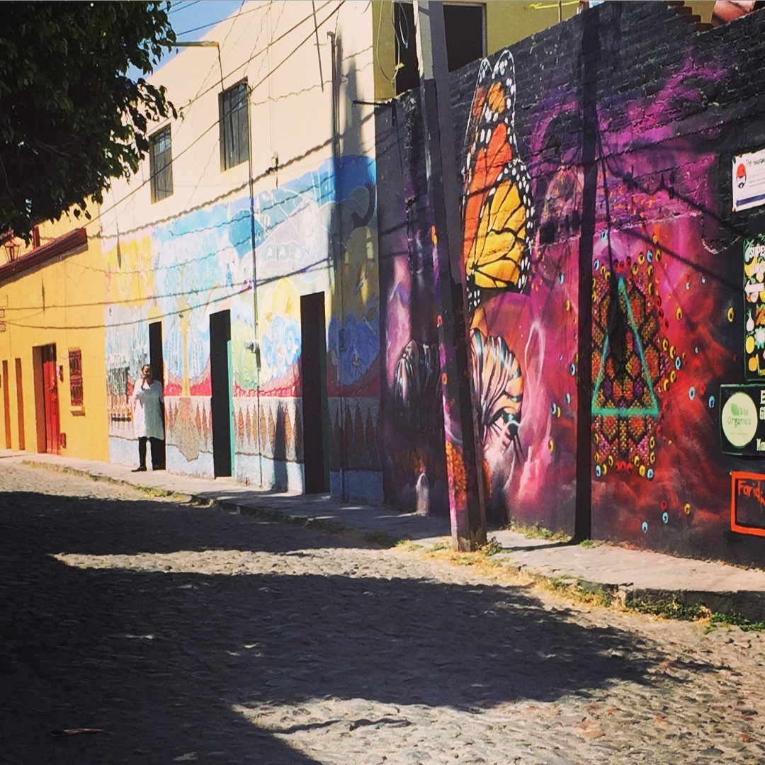 Some of the Street Art of San Miguel. Every Year the artists paint and change the walls.