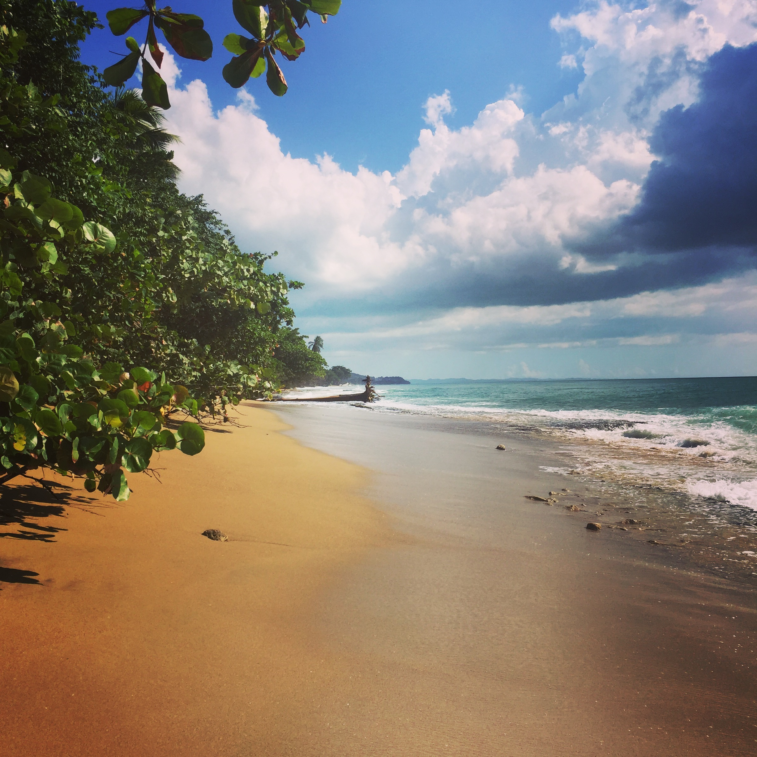 Walk the open sands... This is Rincon, Puerto Rico.