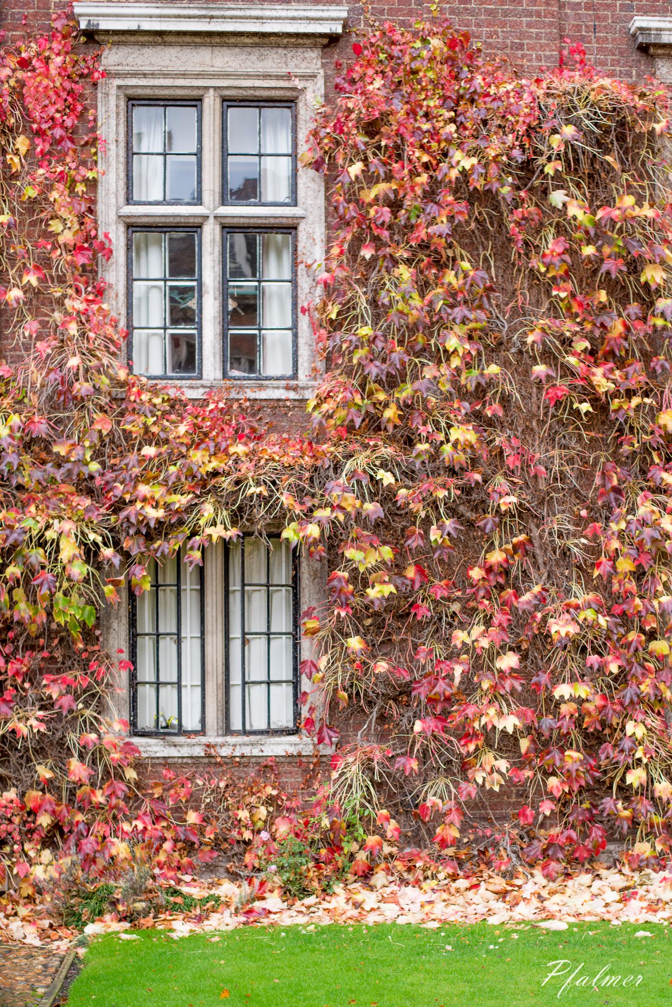 Cambridge-15.jpg