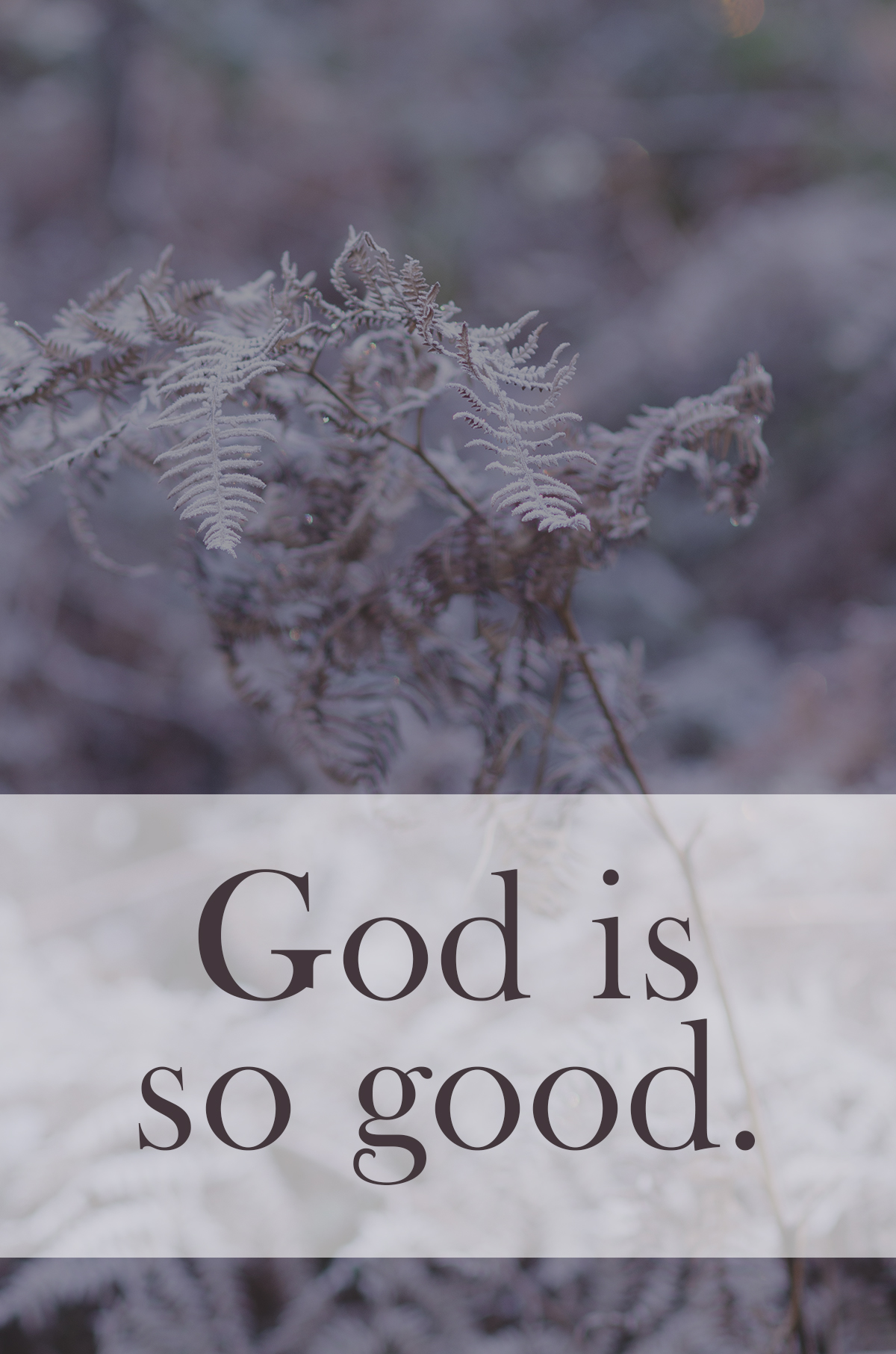 This is the story our God is writing: a story of the unexpected, the undeserved. He is sovereign over the universe and yet instead of demanding rich temples, shrines, and tributes, He gives. He is so good.