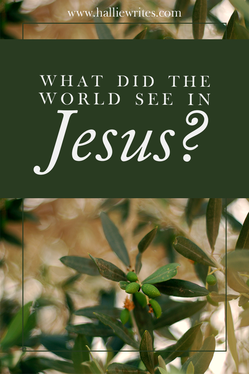 Can we share the Gospel with our lives by being better people, or would they even notice? We want them to see Jesus in us, but what did the world see in Jesus?