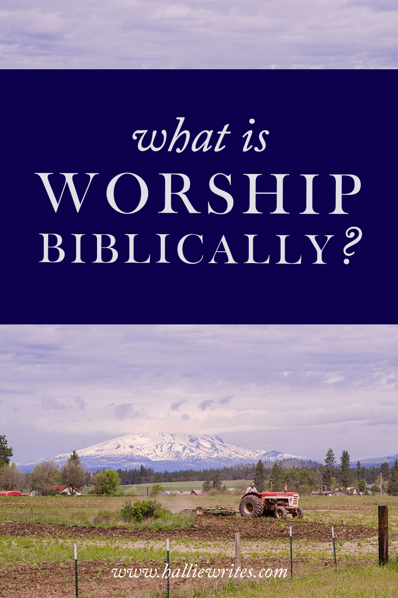 Biblical vocabulary: What is worship? Is it the same thing as praise and singing, or is it something more?