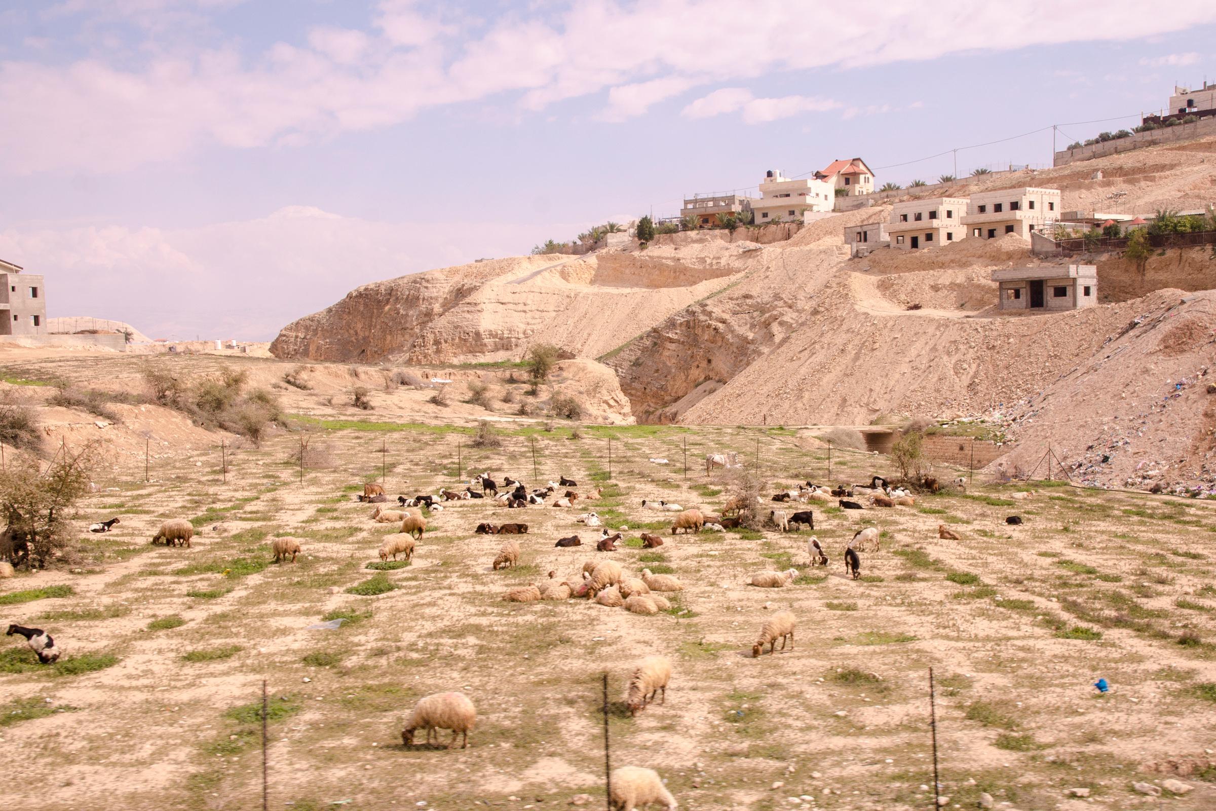 Israel102.jpg