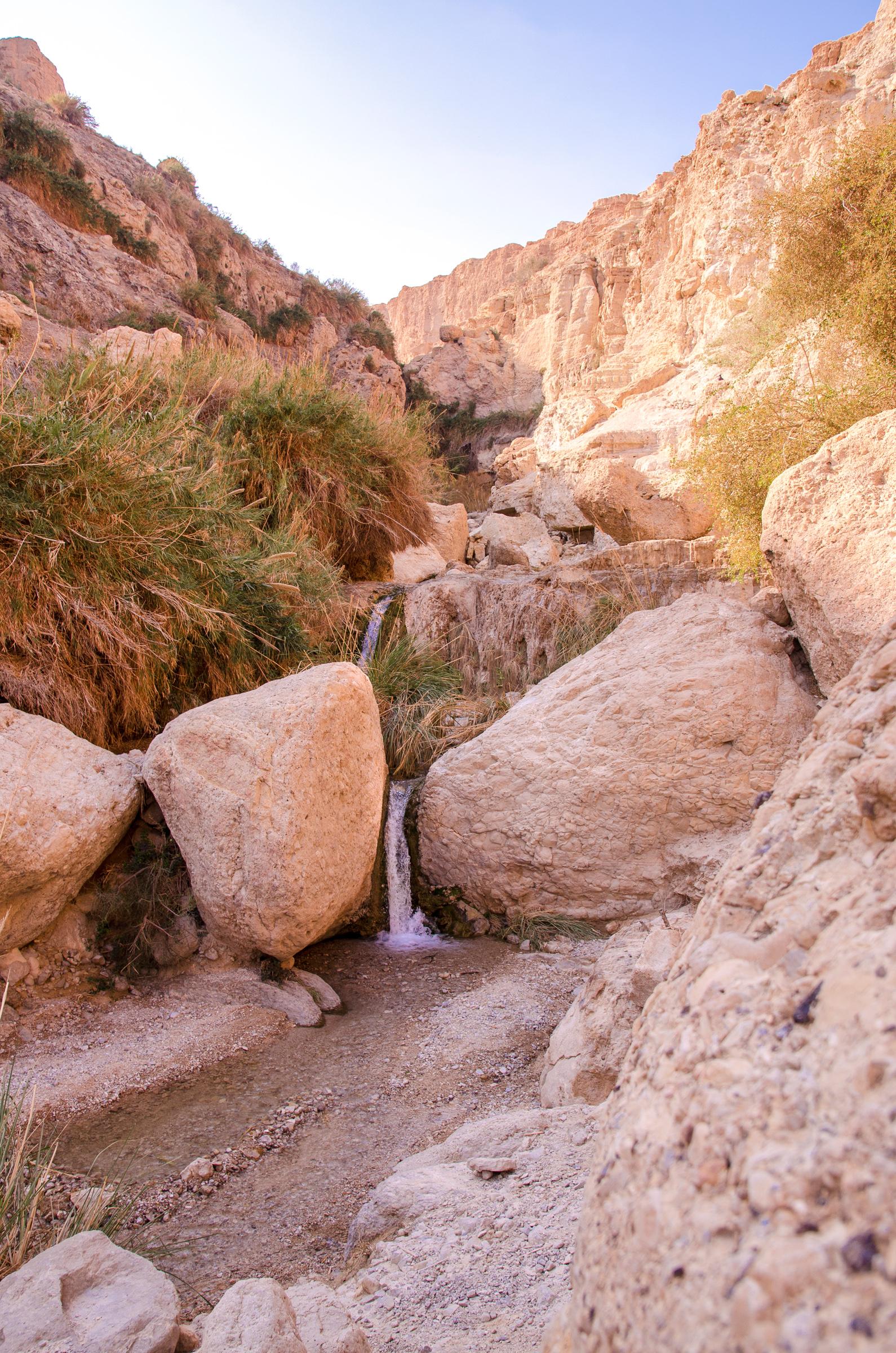 Israel153.jpg