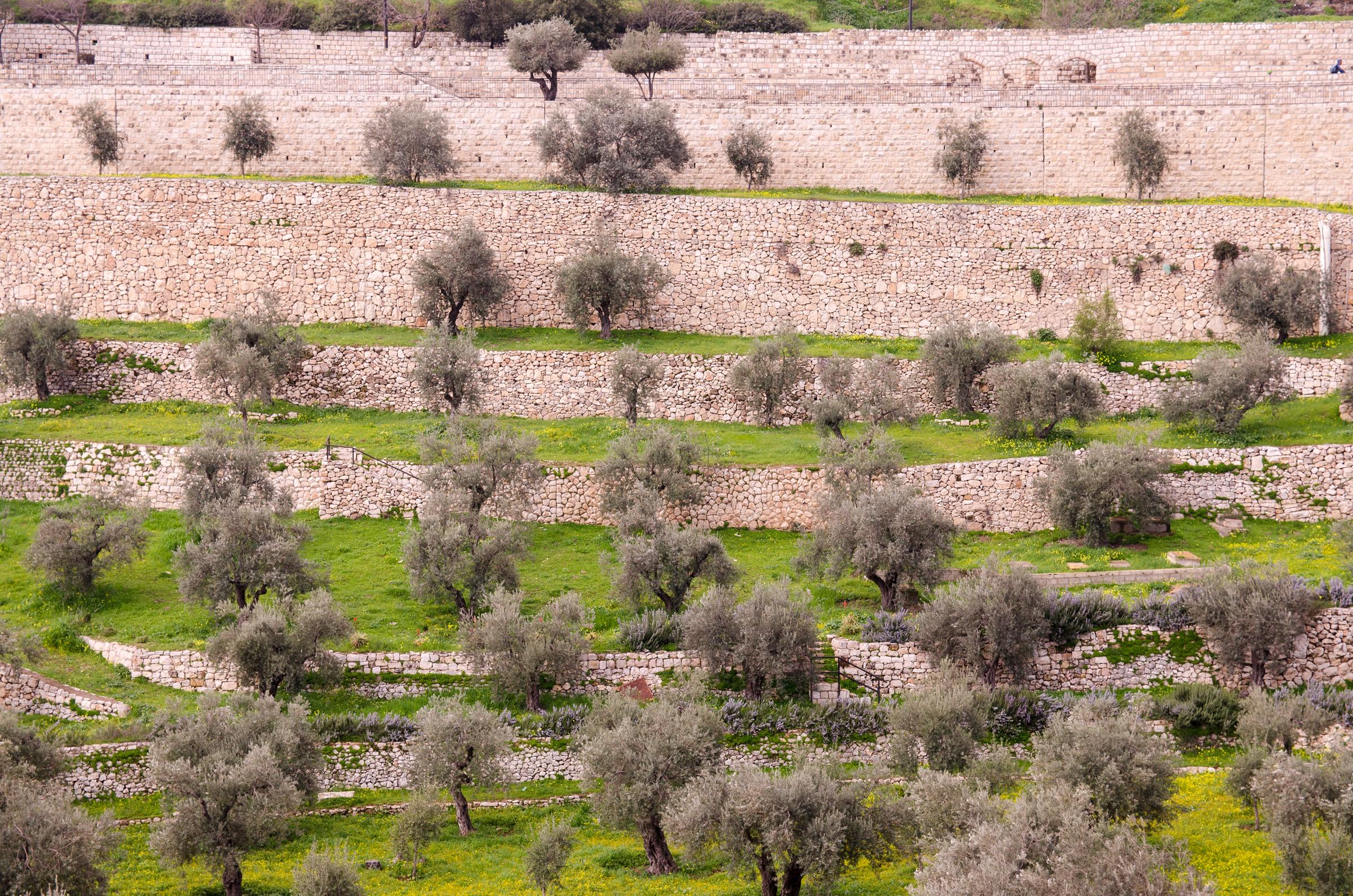 Israel169.jpg
