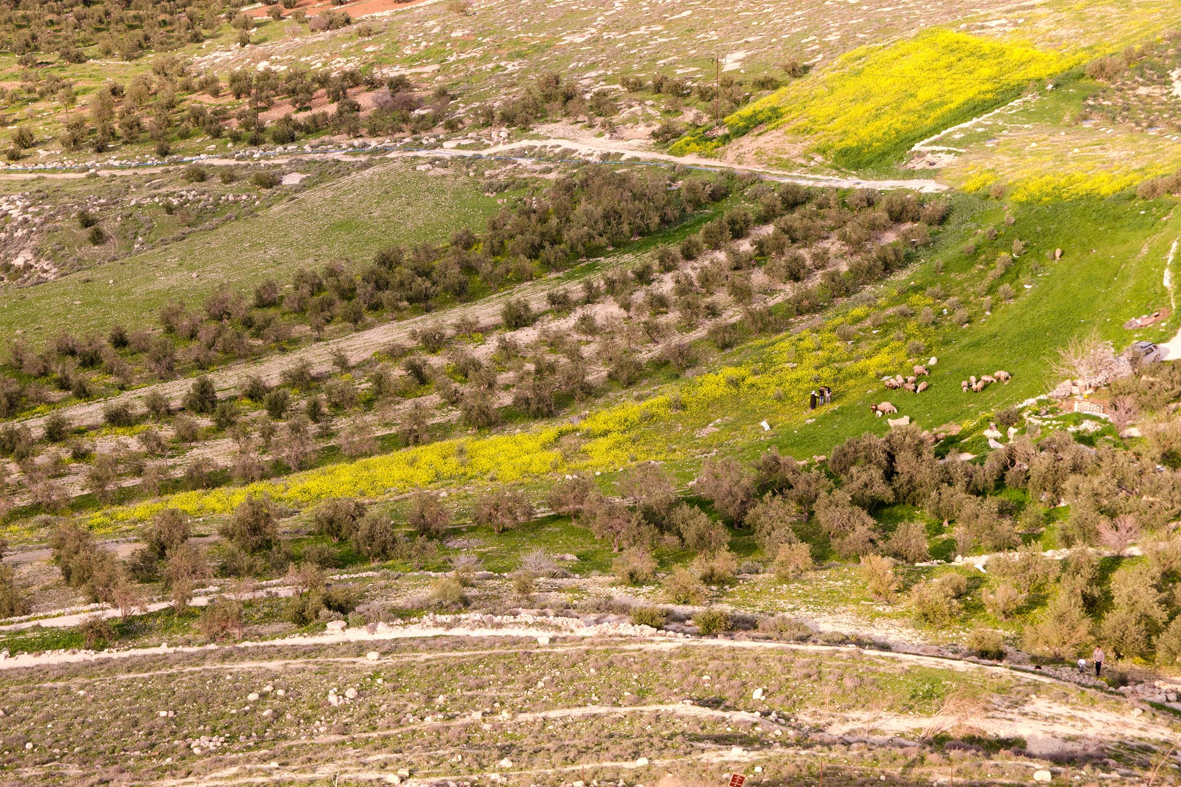 Israel176.jpg