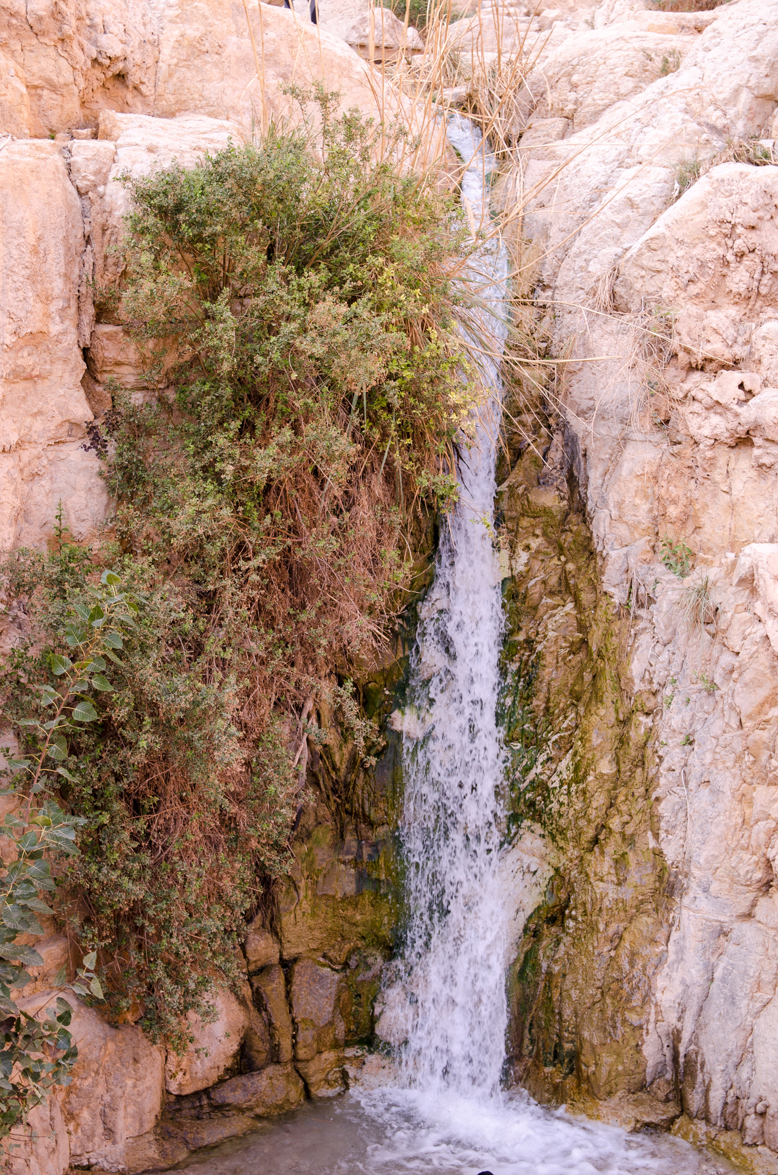 Israel152.jpg