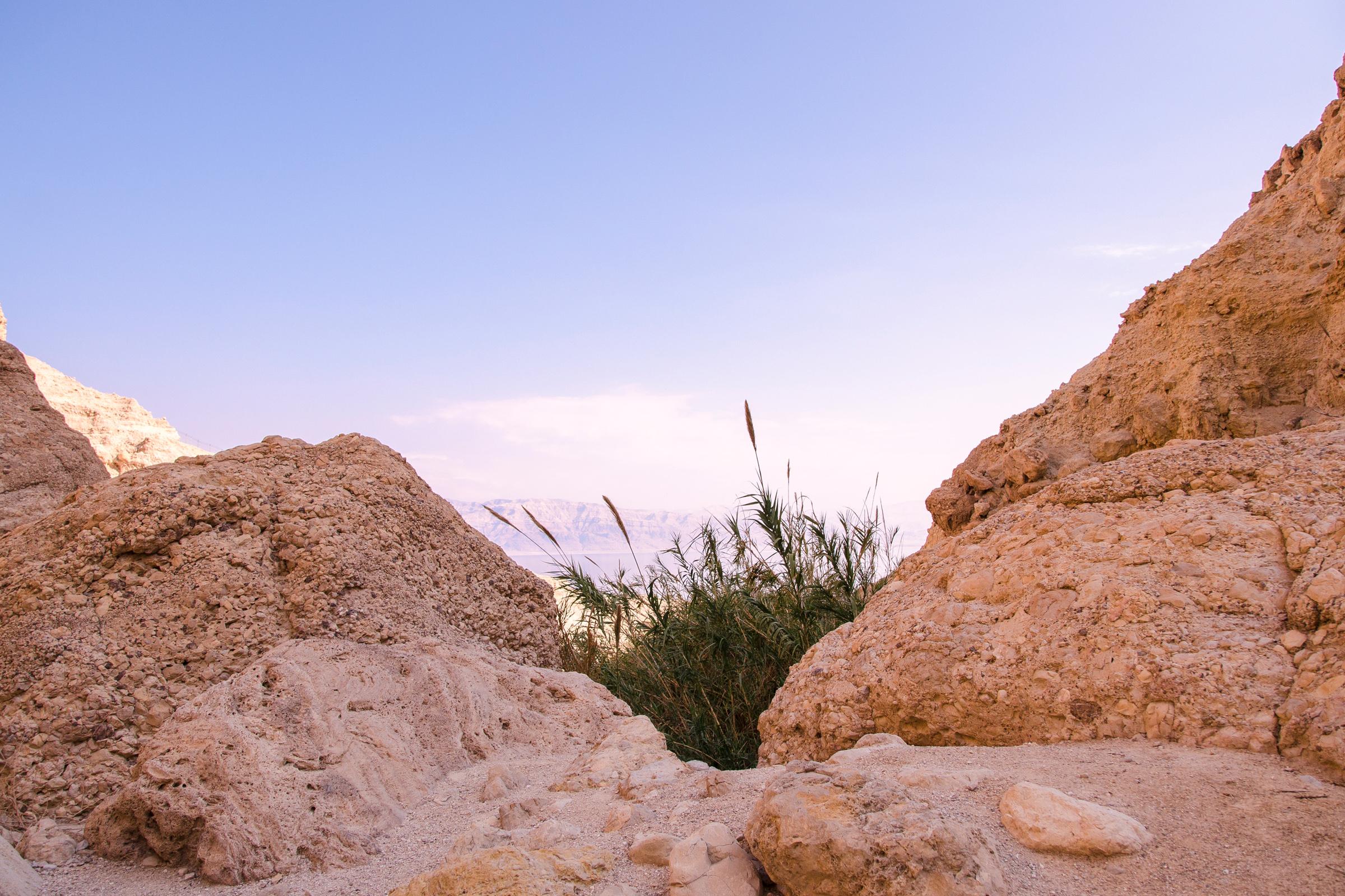 Israel154.jpg