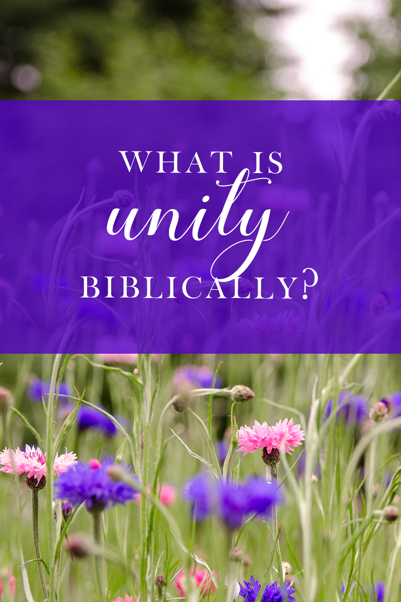 biblical vocabulary : What is unity?