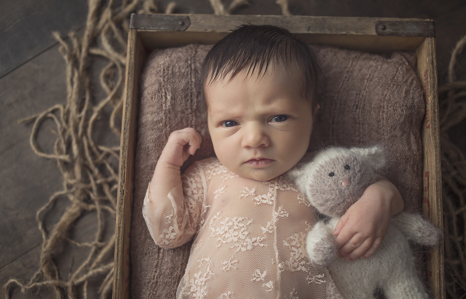 gorgous black hair newborn baby girl posed in vintage wood crate with lamb lovie and lace romper with eyes open